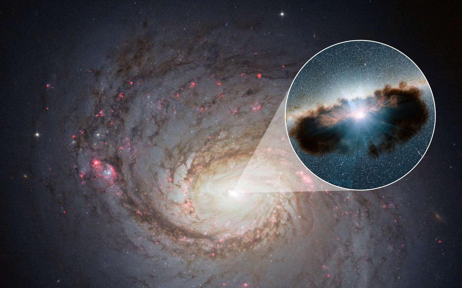 Une vue d'artiste du trou noir supermassif entouré de son tore de poussière à l'intérieur de la galaxie NGC 1068. © Nasa