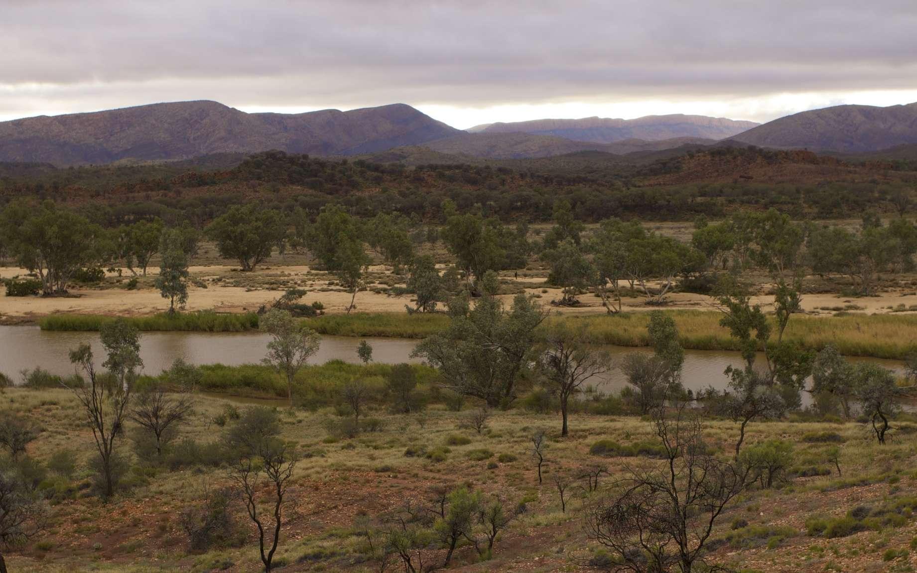 Le fleuve le plus vieux du monde suit son cours en faisant des détours sinueux au beau milieu de l'Australie. © BRJ Inc., Flickr