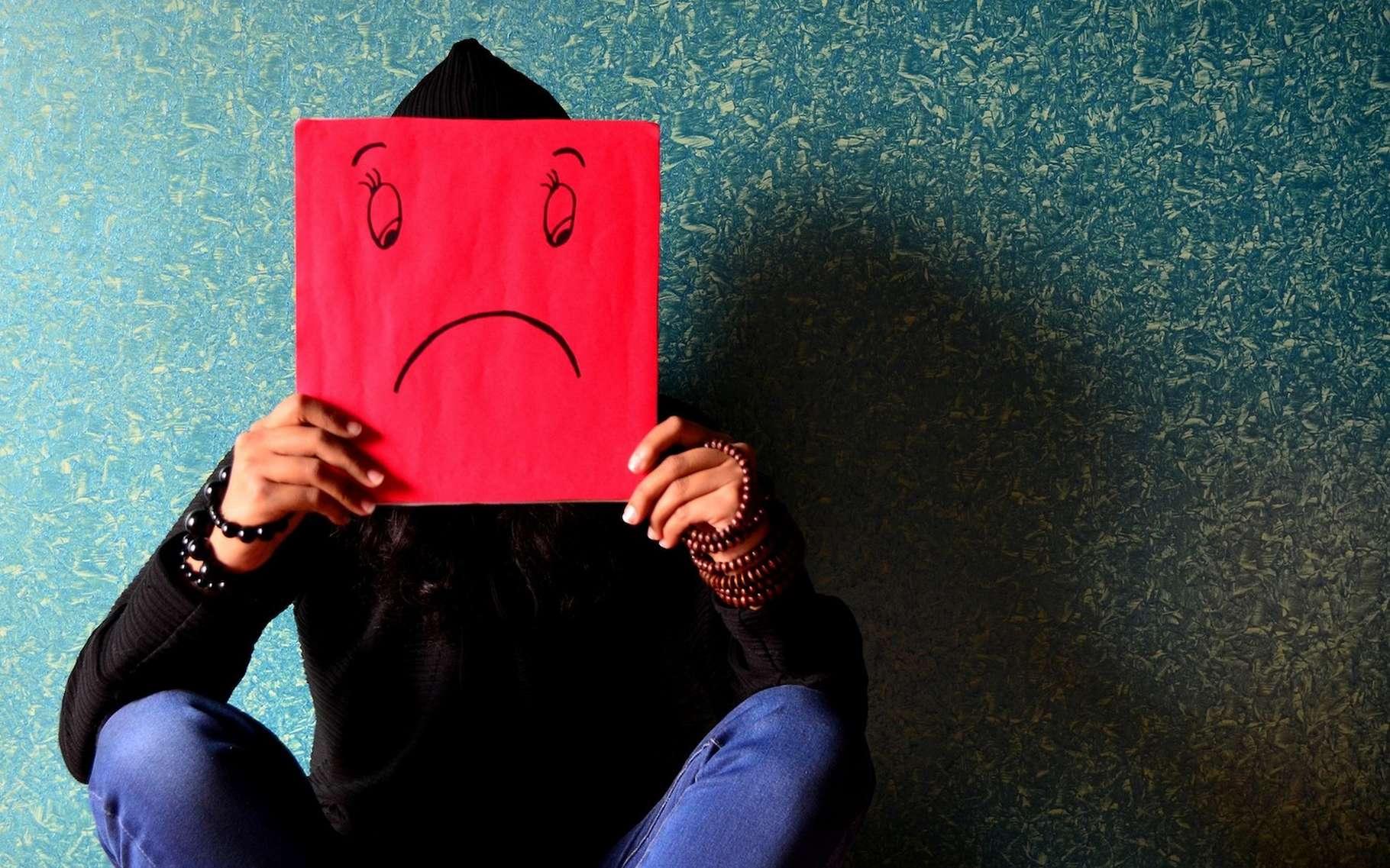 Une situation de stress subie en début de vie et notre cerveau se développe différemment de celui des autres. © PDPics, Pixabay, CC0 Creative Commons