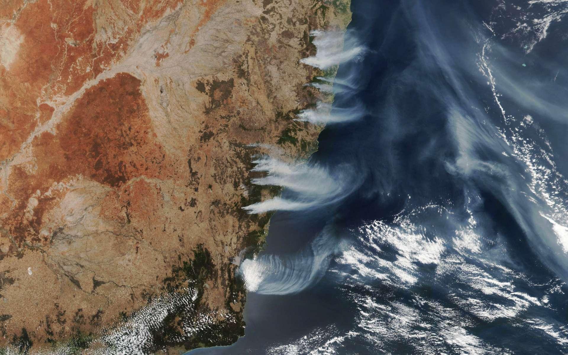 Les feux font toujours rage en Australie. © Lauren Dauphin, Nasa