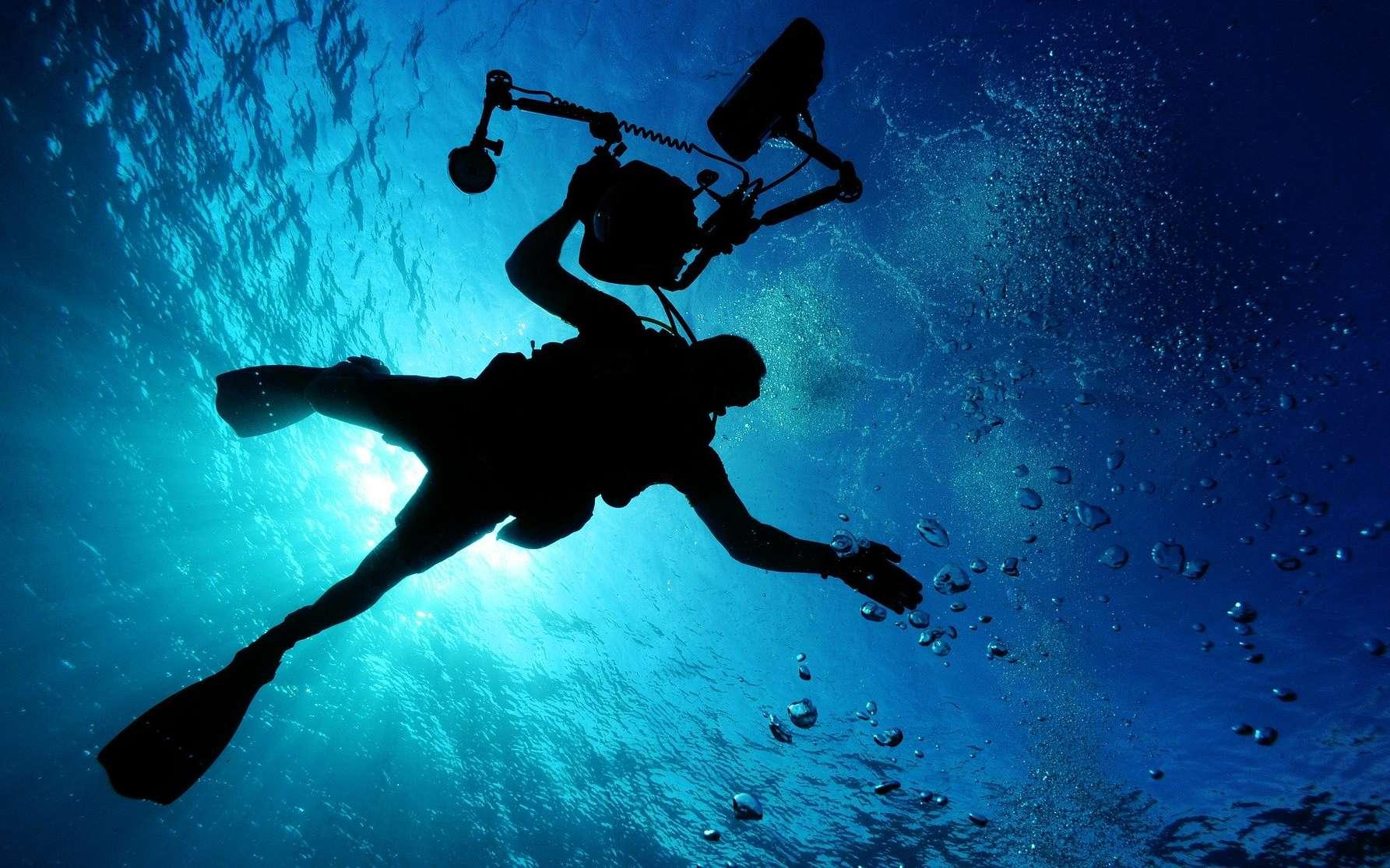Comme les ondes radio se déplacent mal dans l'eau, des scientifiques développent une version sous-marine du Wi-Fi basée sur les signaux lumineux. © David Mark, Pixabay