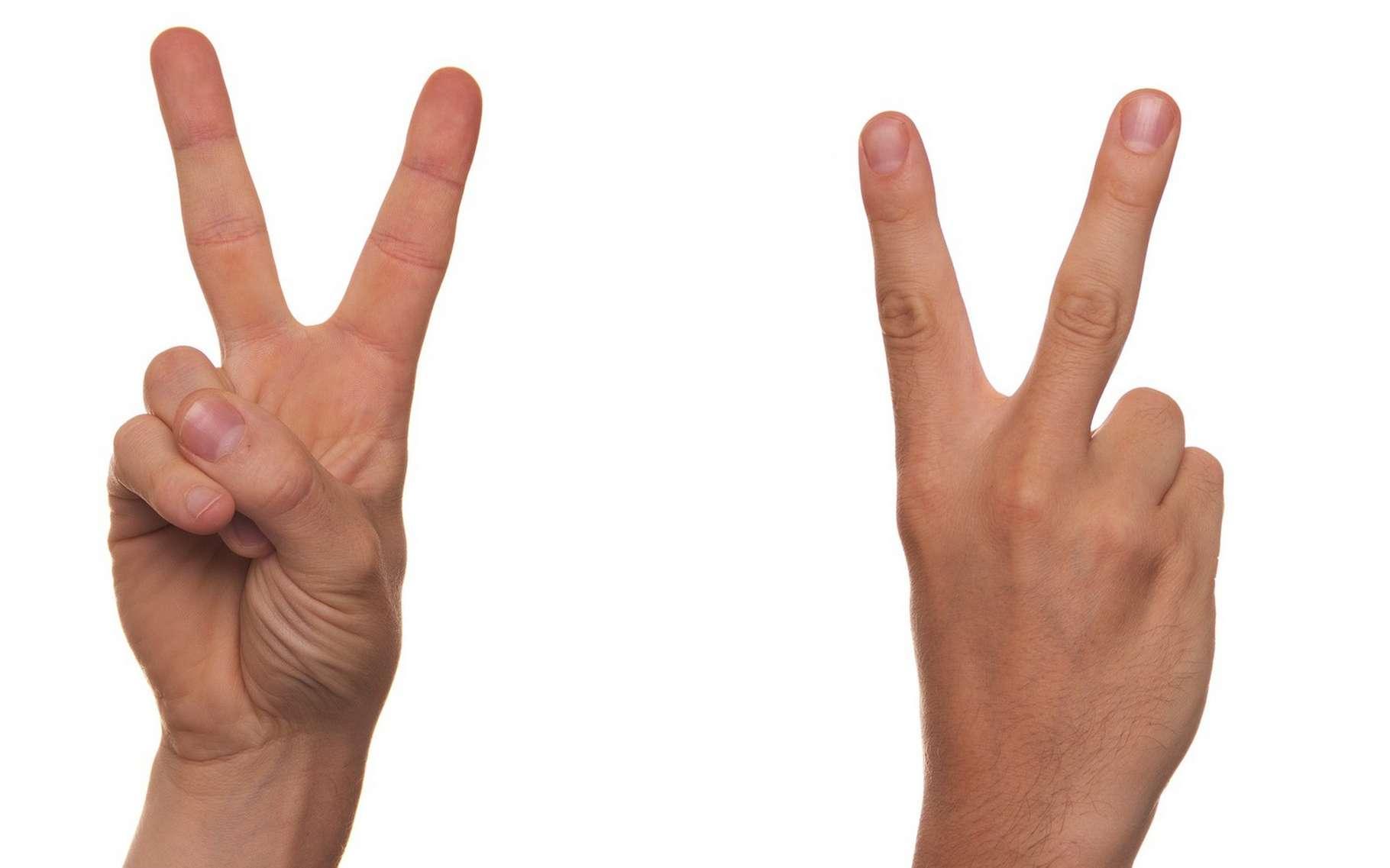 Le « V » de la victoire est prisé des jeunes qui aiment à prendre des autoportraits en faisant ce geste. © Niekverlaan, CC0 via Pixabay