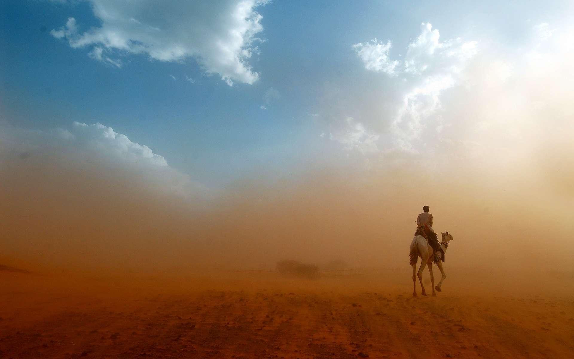 En soufflant violemment, l'harmattan soulève des poussières. © onairda, Shutterstock