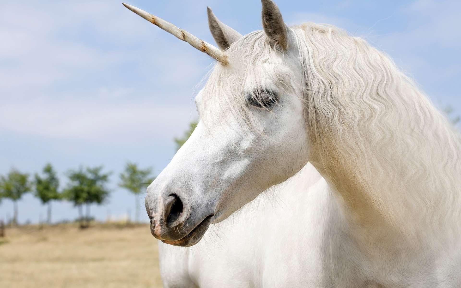 La licorne de Sibérie ne ressemblait pas vraiment à un cheval féérique. © Marben, Shutterstock