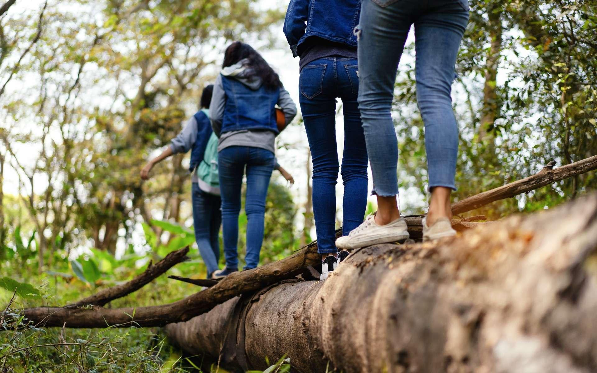 Dix minutes de promenade dans la nature réduit le stress. © Foto2u, Adobe Stock