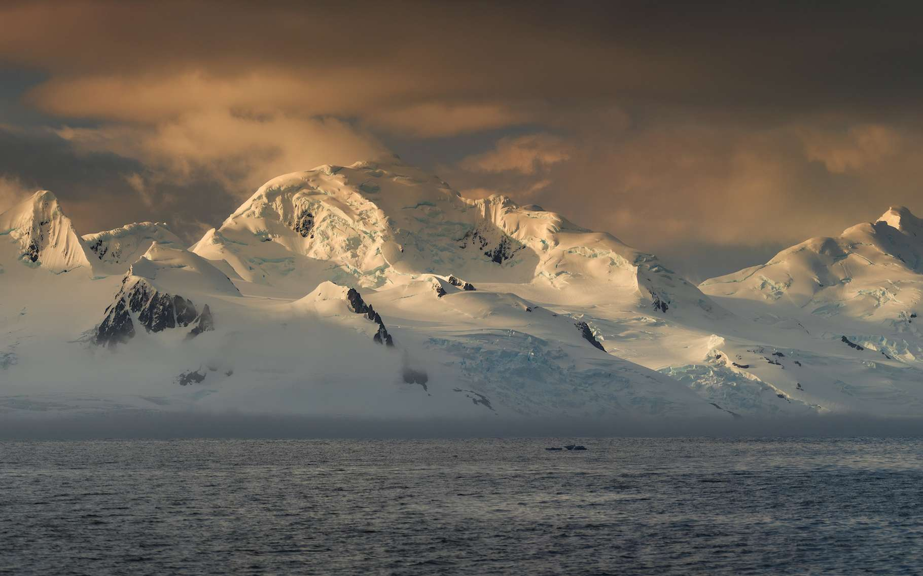 Des chercheurs de l'université de Nouvelle-Galles du Sud (Australie) nous révèlent que lors de la dernière période interglaciaire, l'Antarctique a fondu, provoquant une importante montée du niveau des mers. © sergejson, Adobe Stock