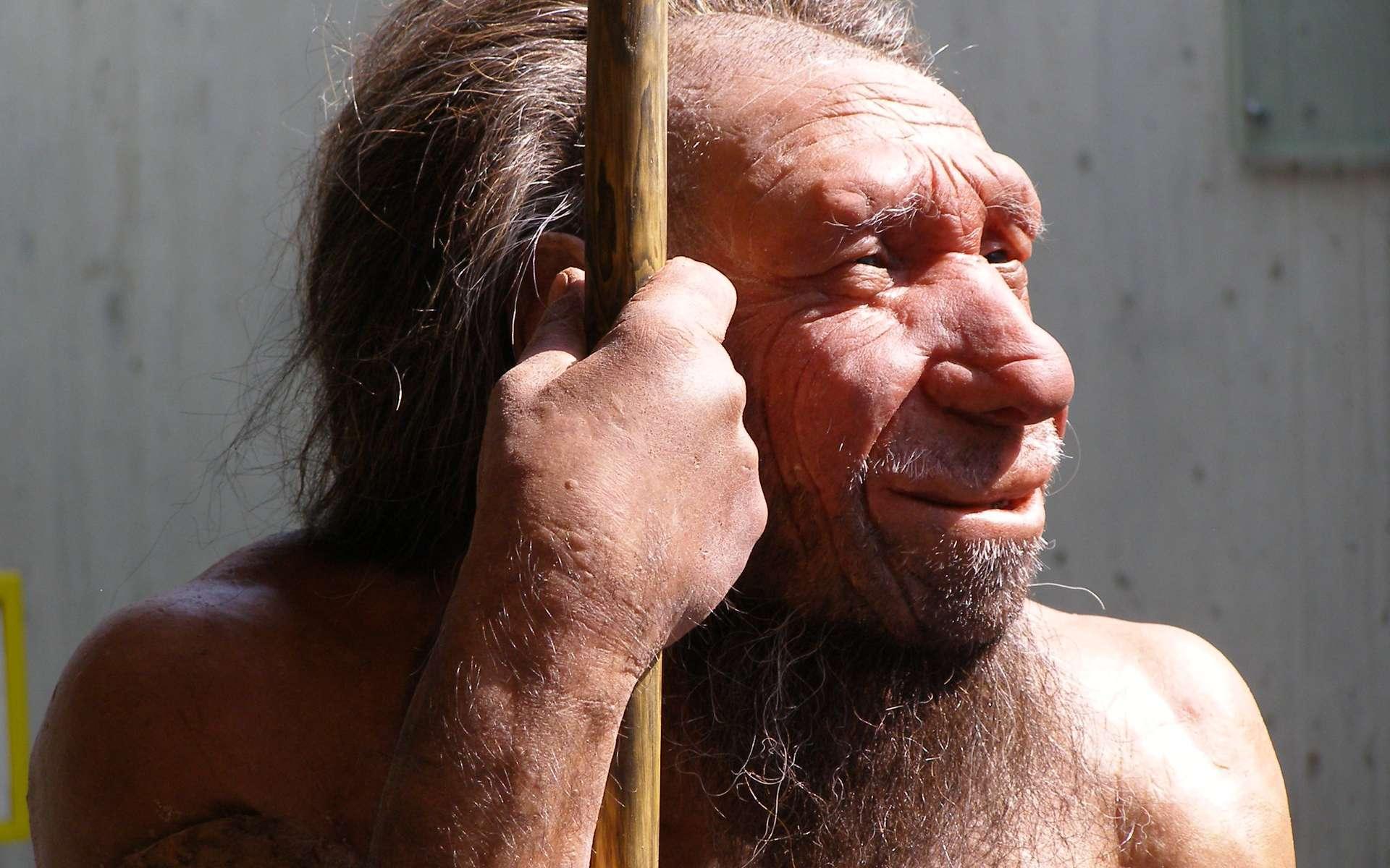 L'Homme de Néandertal ne mangeait pas que des chevaux, des rennes ou des bouquetins. Il semblerait qu'il s'adonnait également au cannibalisme. © Erich Ferdinand, Flickr, CC by 2.0