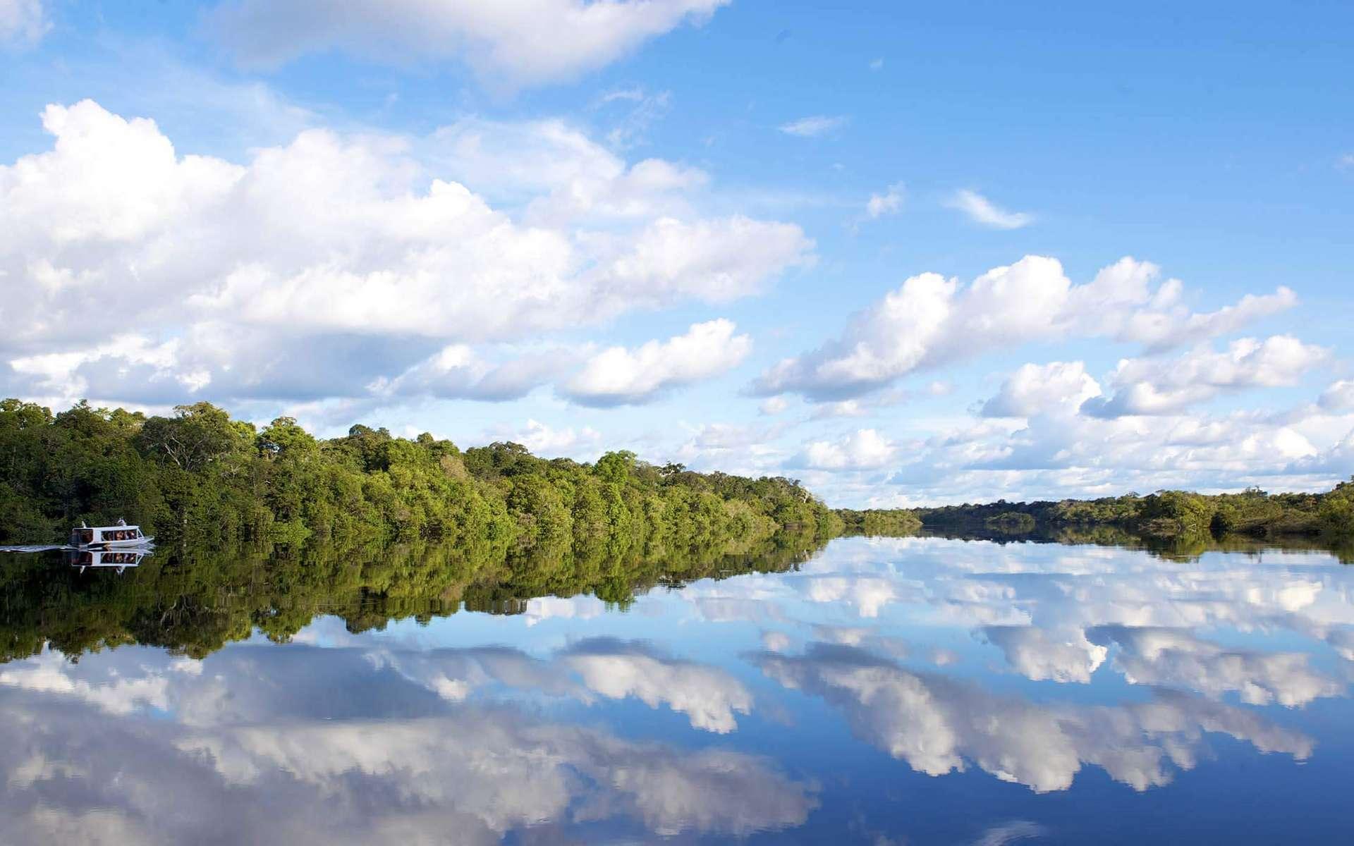Êtes-vous prêt à embarquer pour une croisière en Amazonie, sur les traces des explorateurs d'antan ? © Jean Robert