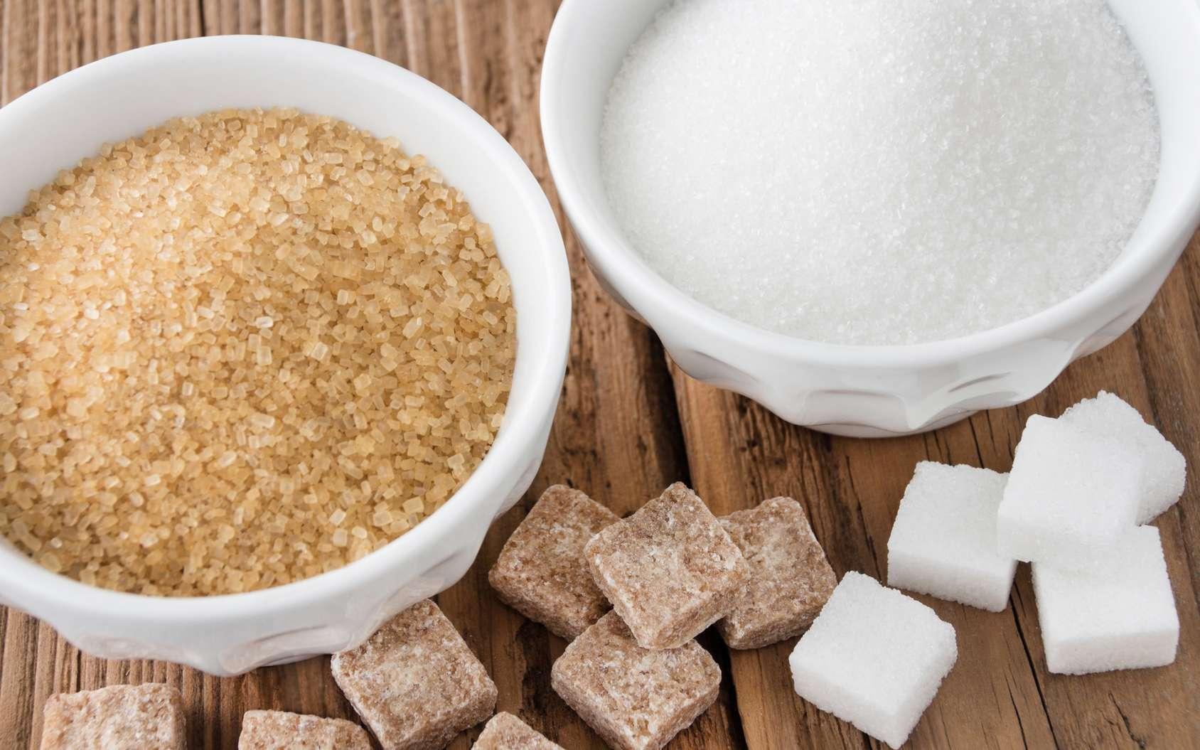 Le sucre roux est essentiellement produit à partir de la canne. Le sucre blanc, quant à lui, est issu de la betterave. © PhotoSG, fotolia