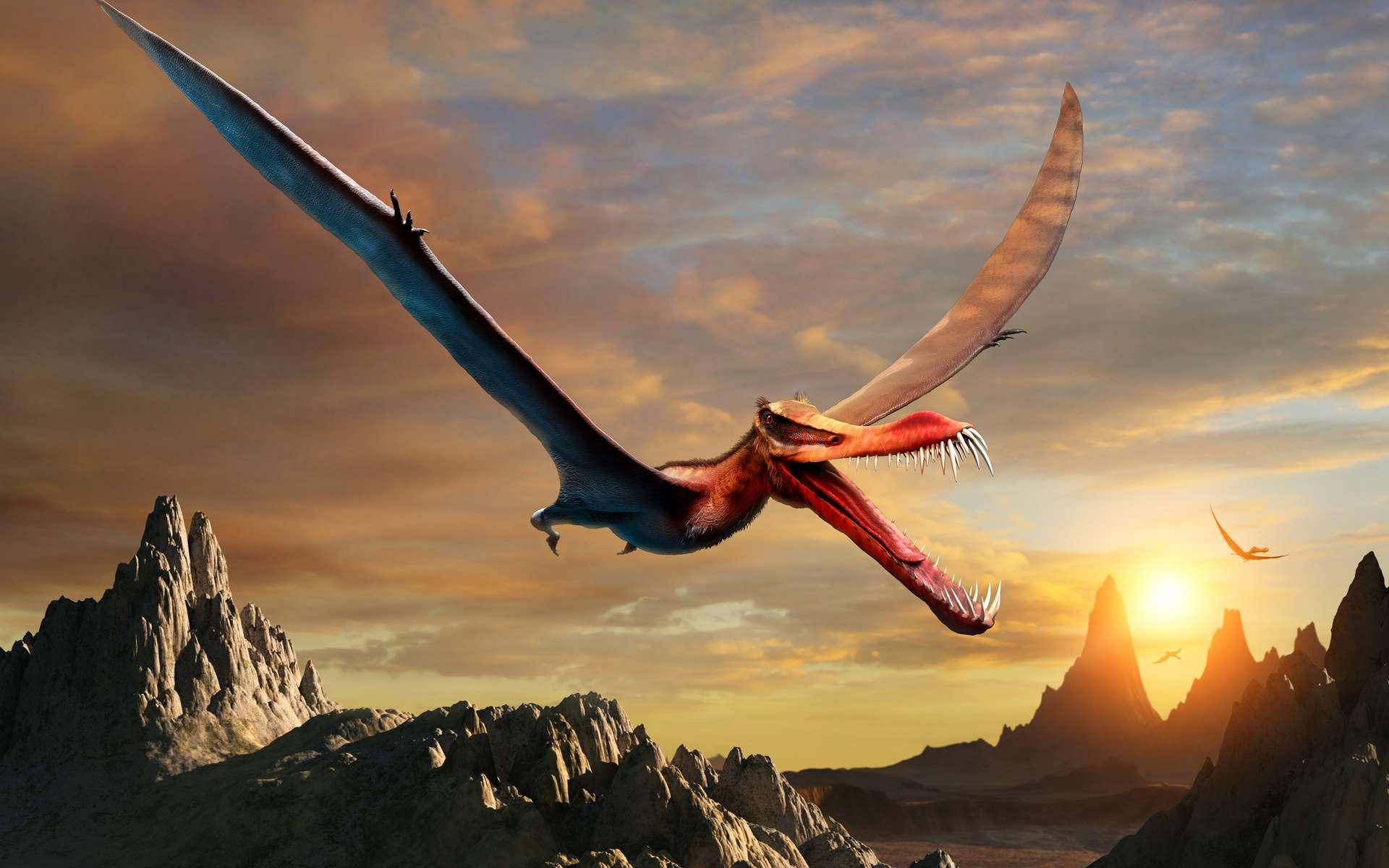 Les ptérosaures tels que cet Anhanguera occupaient le ciel il y a 66 à 228 millions d'années en arrière. © warpaintcobra, Adobe Stock