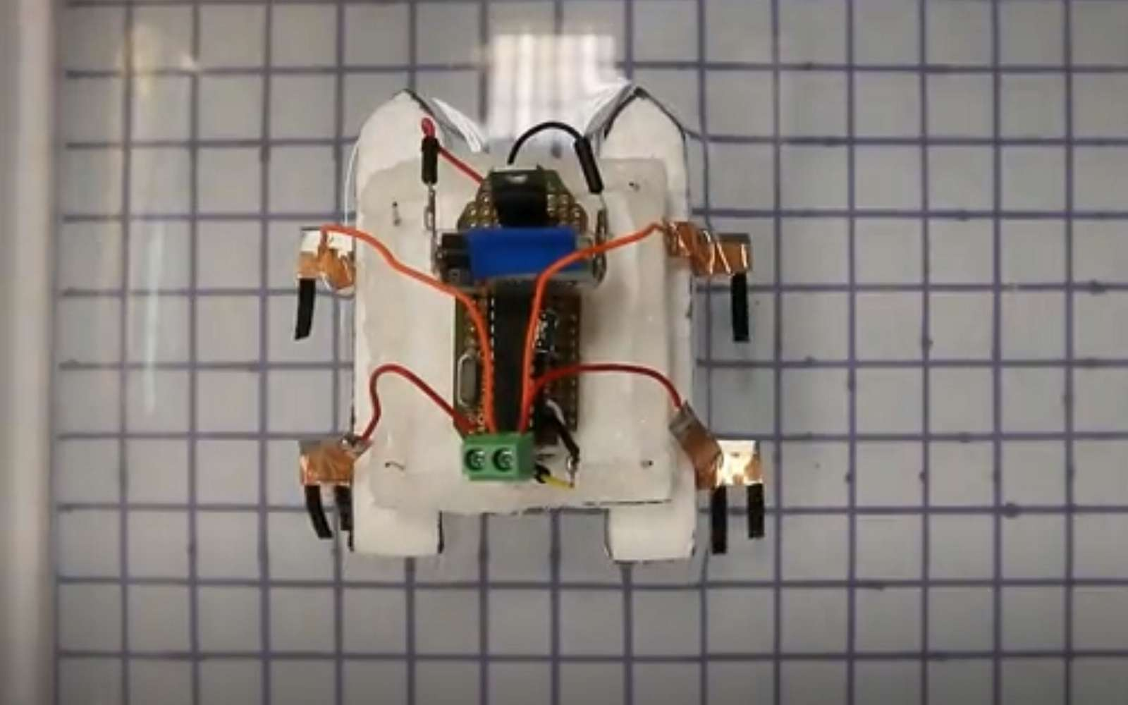 Les chercheurs de l'université de Hong Kong ont mis au point un mini-robot doté de pattes conçues à partir d'un matériau constitué d'hydroxyde de nickel oxyhydroxide. Dès qu'une source de lumière vient les stimuler, les pattes se déforment et déplacent le robot vers cette source. © University of Hong Kong