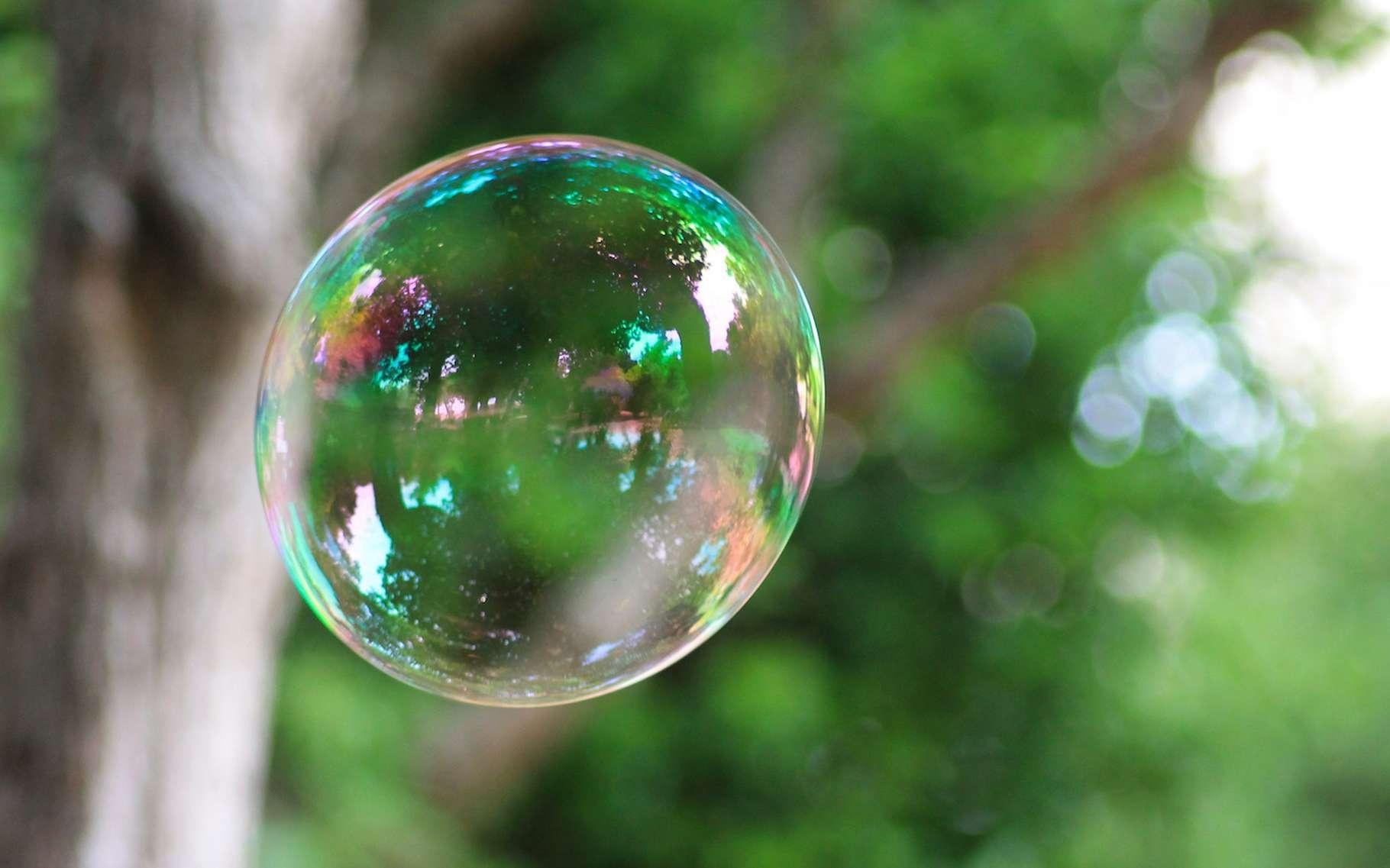 C'est sous l'effet Marangoni, entre autres, que se créent les arcs-en-ciel de couleur en mouvement à la surface des bulles de savon. © marie alexandre, Flickr, CC by nc-nd 2.0