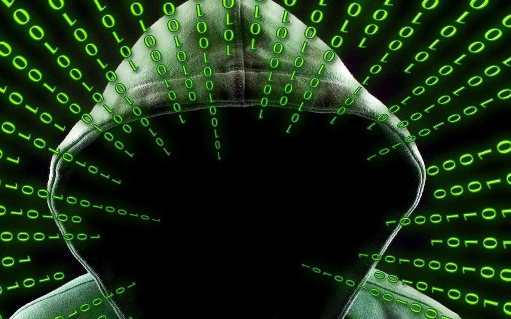 Les Blackhat sont des hackeurs mal intentionnés. © geralt, Pixabay