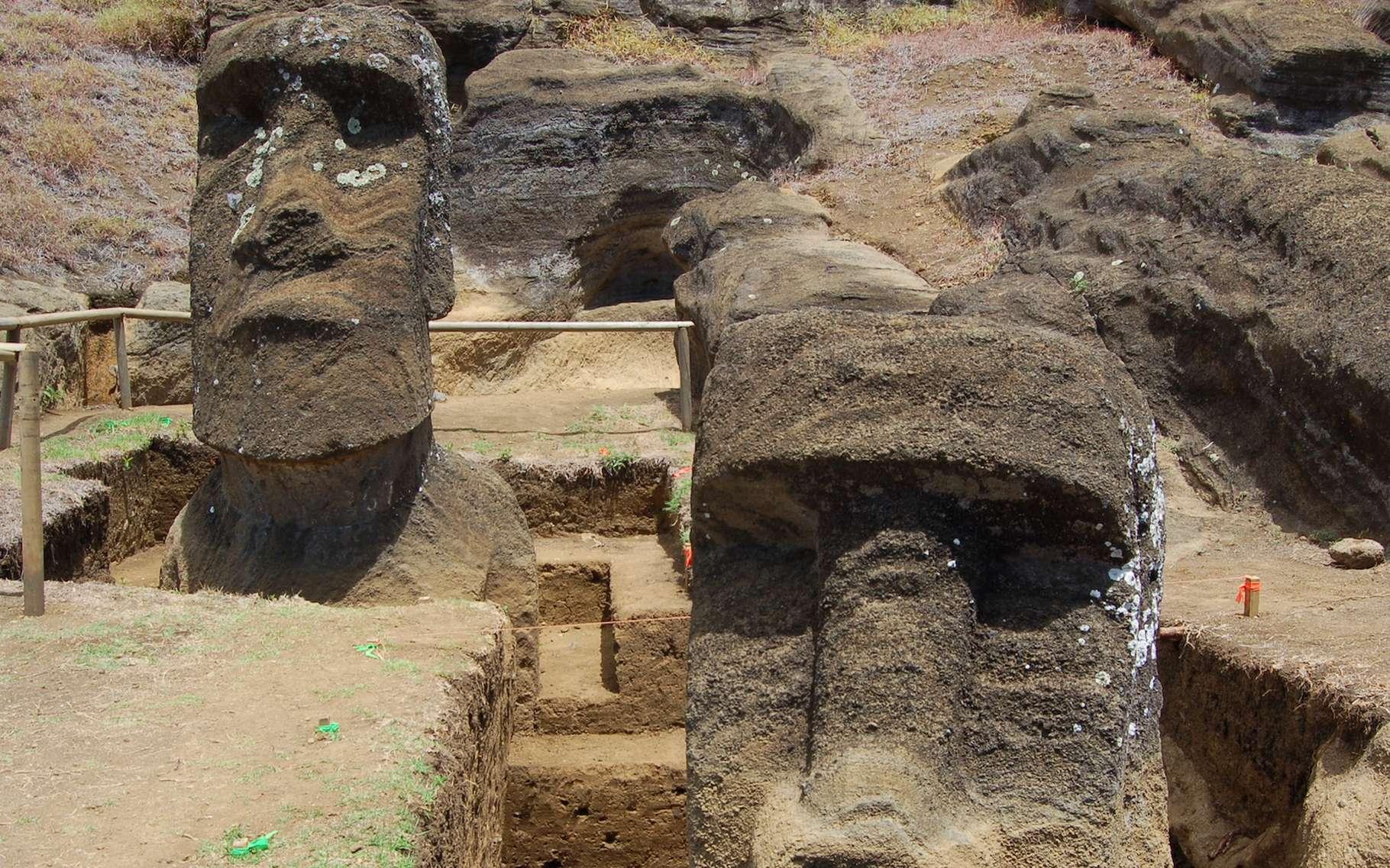 Des chercheurs de l'université de Californie à Los Angeles (États-Unis) imaginent aujourd'hui que les statues géantes de l'île de Pâques ont aidé l'agriculture locale. © Easter Island Statue Project, Université de Californie