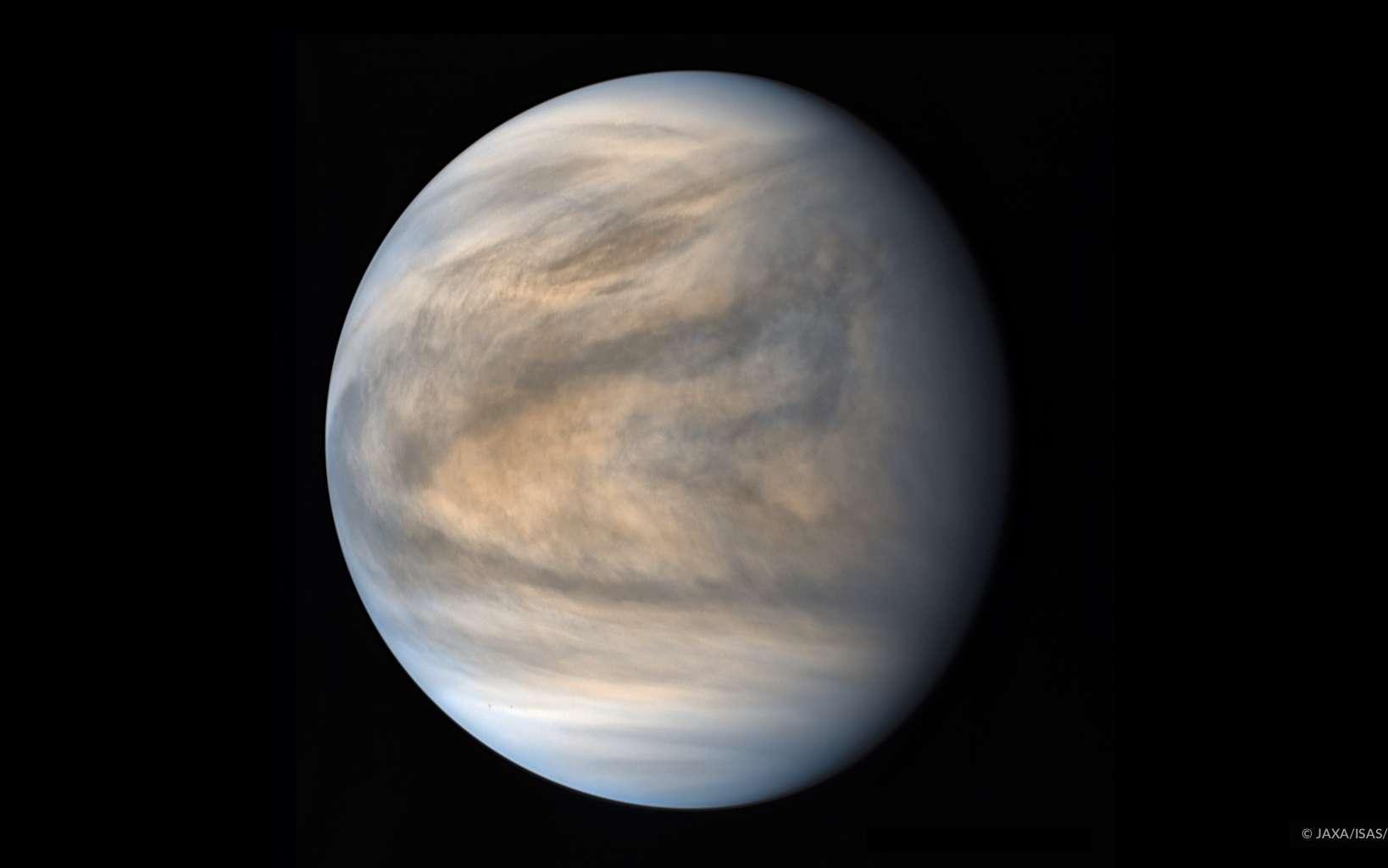 Vénus sous l'œil de la caméra UV1. Image traitée par Damia Bouic. Les pôles sont plus calmes que les régions tropicales. © Jaxa, Isas, Darts, Damia Bouic