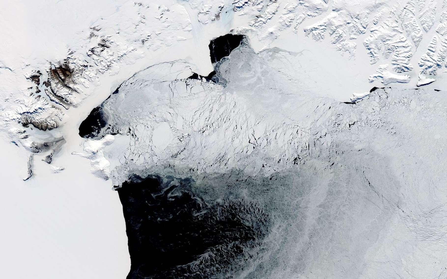 Le terme polynie se rapporte à un trou de glace dans la banquise. Ici, sur la côte de l'Antarctique, à proximité de l'île de Ross. © Earthobservatory, Nasa
