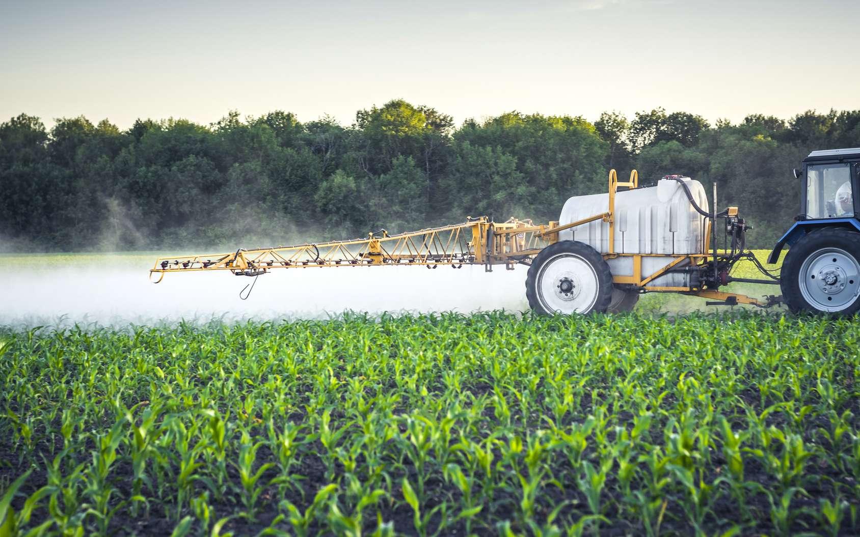 Plus de 200 millions de tonnes de fertilisants sont utilisés chaque année. © Oleksandr, Fotolia