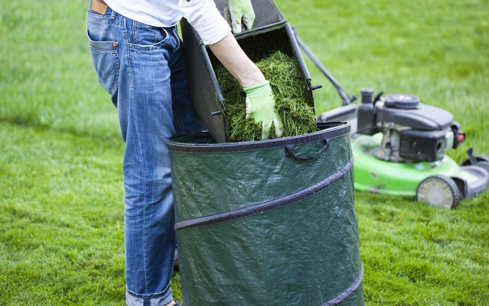 Les tontes du gazon serviront de paillis ou rejoindront le compost. © Volodymyr, Fotolia
