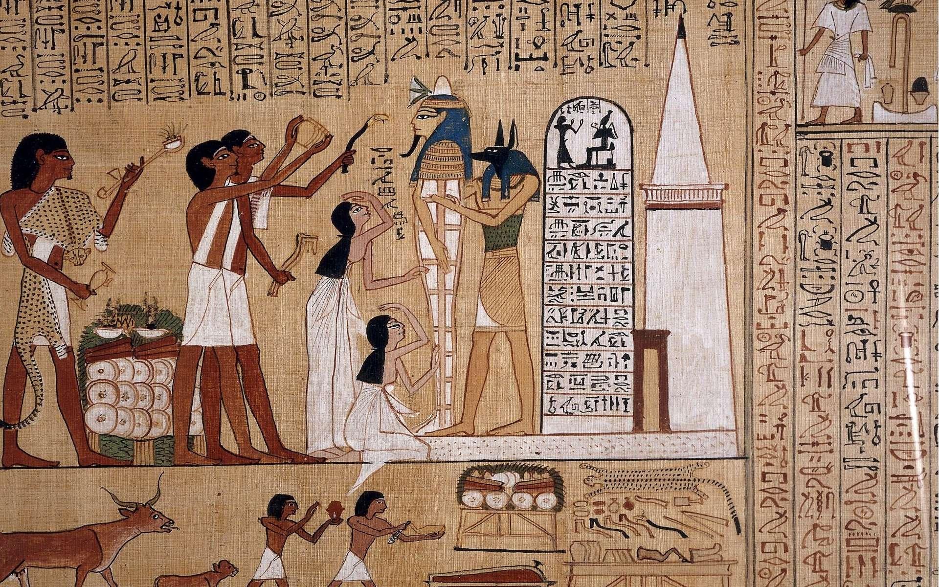 Les hiéroglyphes n'ont servi à composer des phrases, comme celle de ce papyrus, qu'à partir de l'époque du pharaon Djoser © DP, Wikipédia