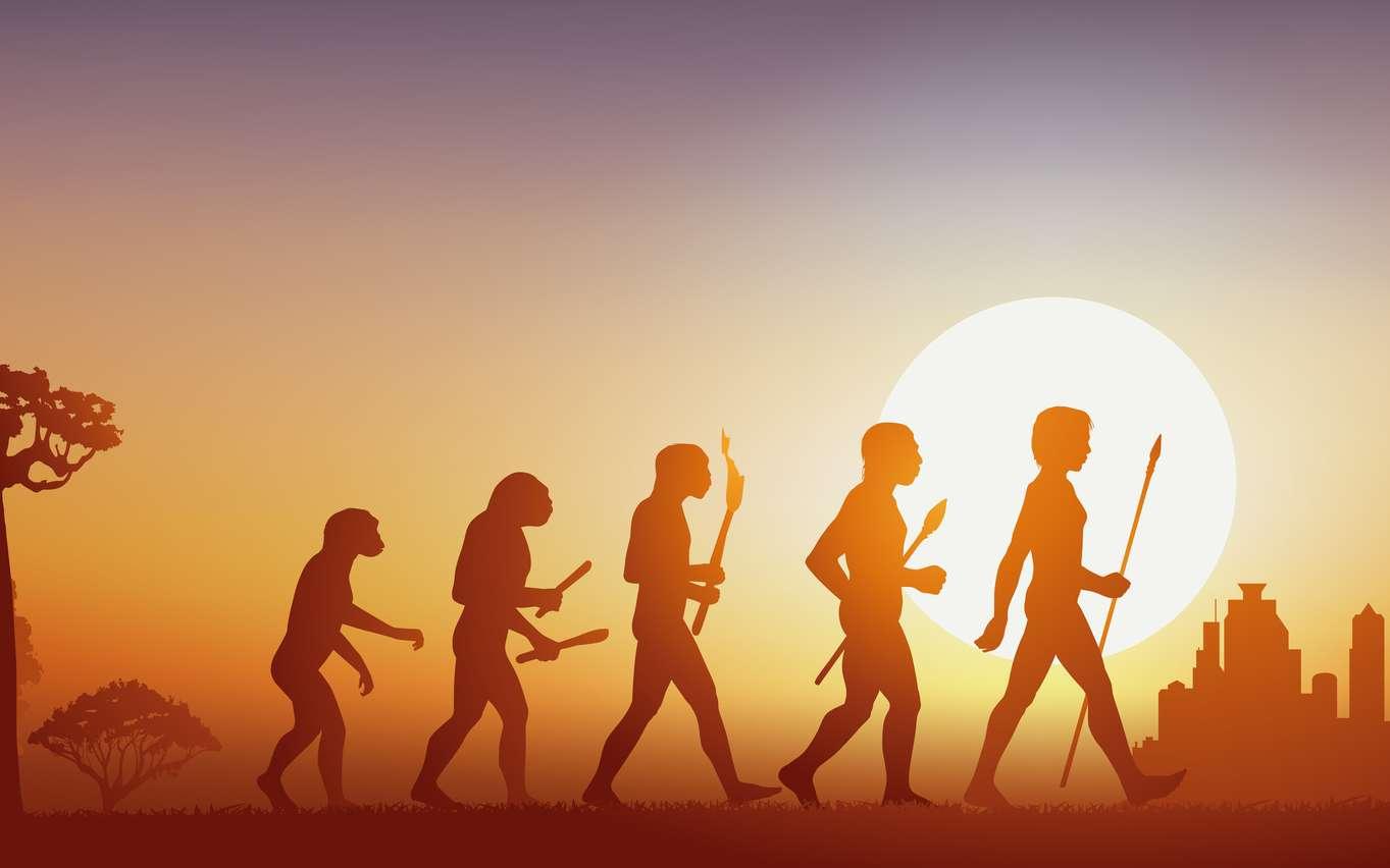 L'histoire des hominidés est complexe et mal connue. La plupart des indices tendent à prouver que la séparation entre les humains (nos ancêtres et les australopithèques) et les singes s'est opérée en Afrique. Mais ce n'est que l'hypothèse la plus probable... © pict rider, Fotolia