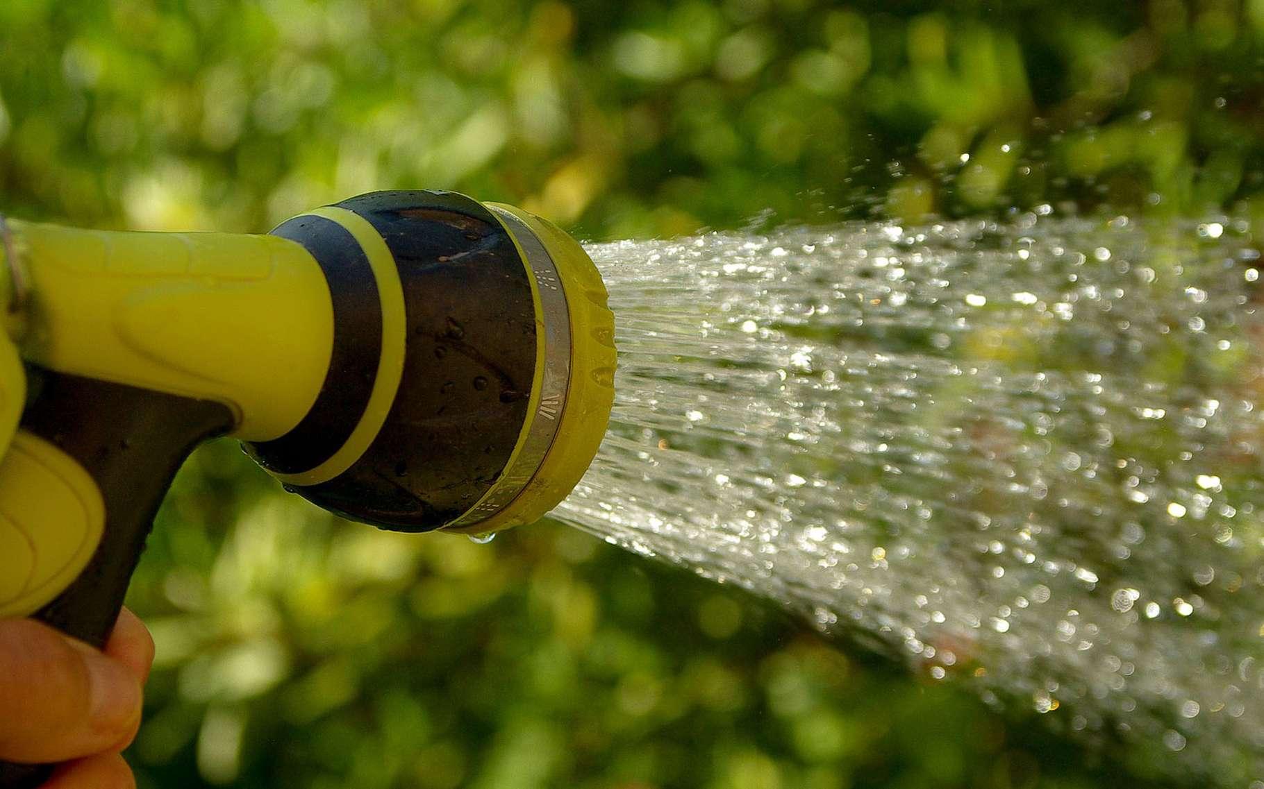 Comment économiser de l'eau en été pour vos cultures ? © JackMac34, Pixabay, DP
