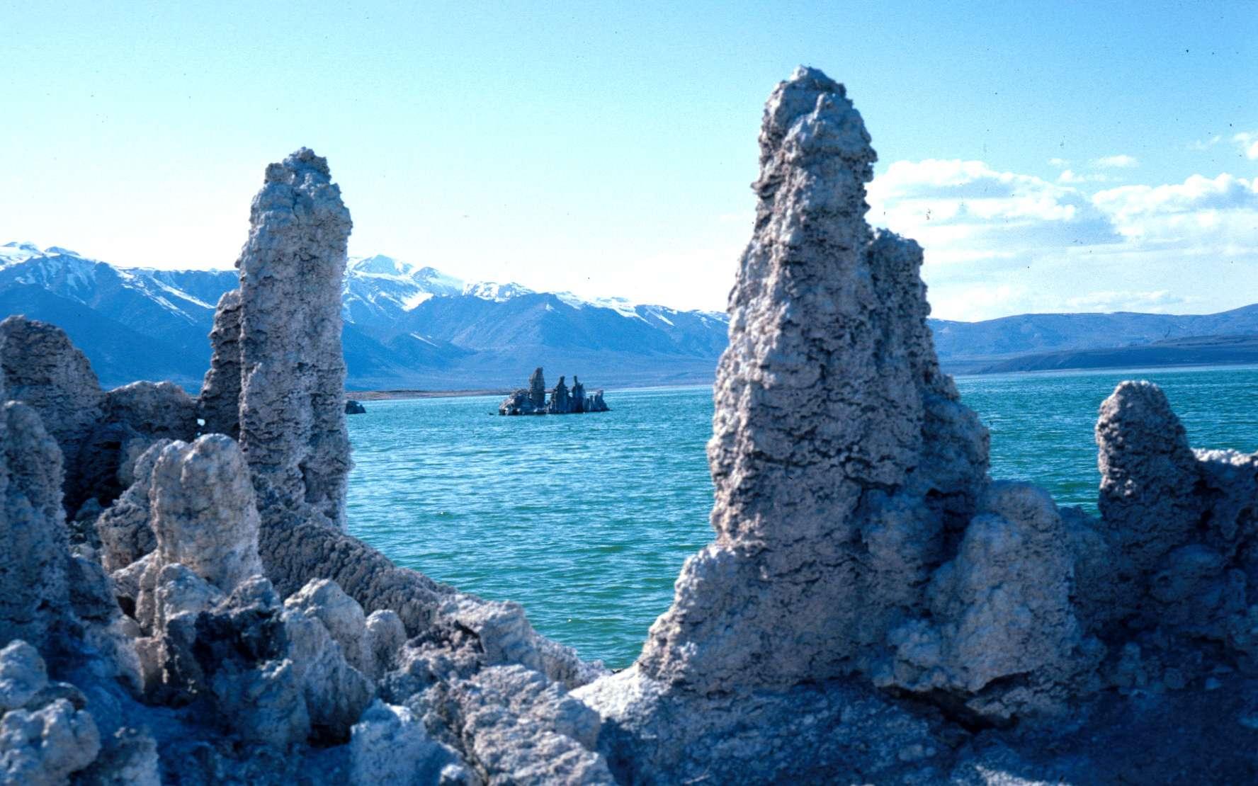 Le lac Mono, traduction de Mono lake en anglais, est un lac salé situé dans le désert de la Sierra Nevada en Californie, à environ 13 kilomètres à l'est du parc du Yosemite. On voit sur cette photo des tufs de calcite et de gypse. Très probablement, Felisa Wolfe-Simon y a découvert des bactéries se développant à partir de l'arsenic, ce qui étendrait les environnements possibles où chercher de la vie... © Joseph Smyth