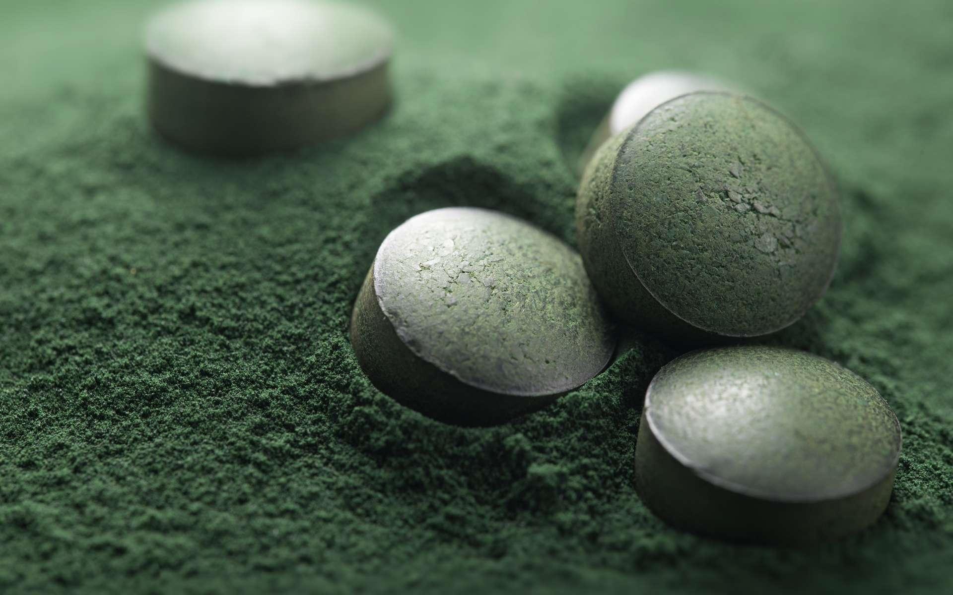 La spiruline, une micro-algue qui nous veut du bien. © Olivier Le Moal, Adobe Stock
