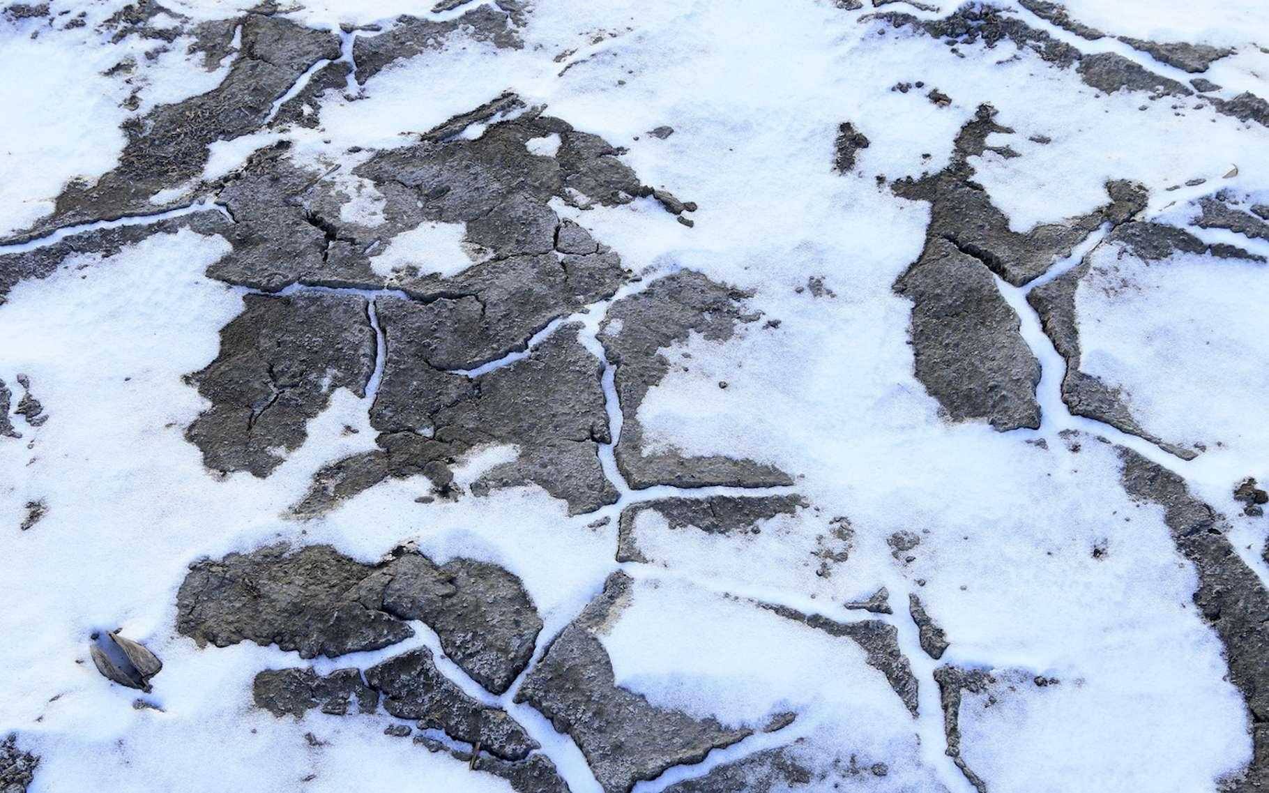 Une expédition a découvert que le permafrost des îles arctiques du Canada a commencé à fondre près de 70 ans plus tôt que prévu. © YuanGeng, Fotolia