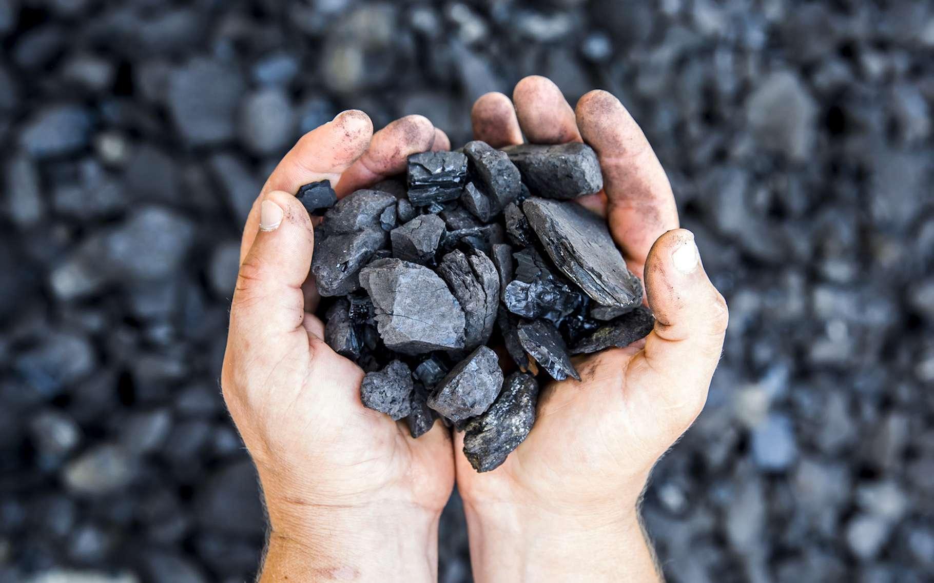 Le charbon est qualifié d'énergie fossile, car issu de la décomposition de matières organiques. © fotosr52, Fotolia