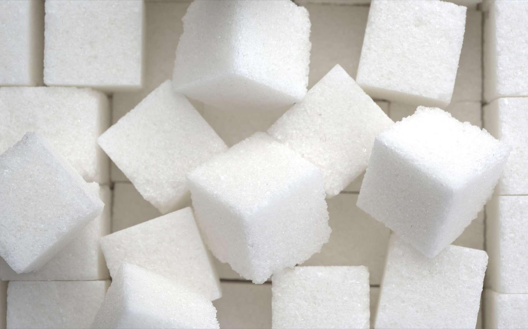 Le saccharose est la molécule présente dans le sucre de table. © Chones, Shutterstock