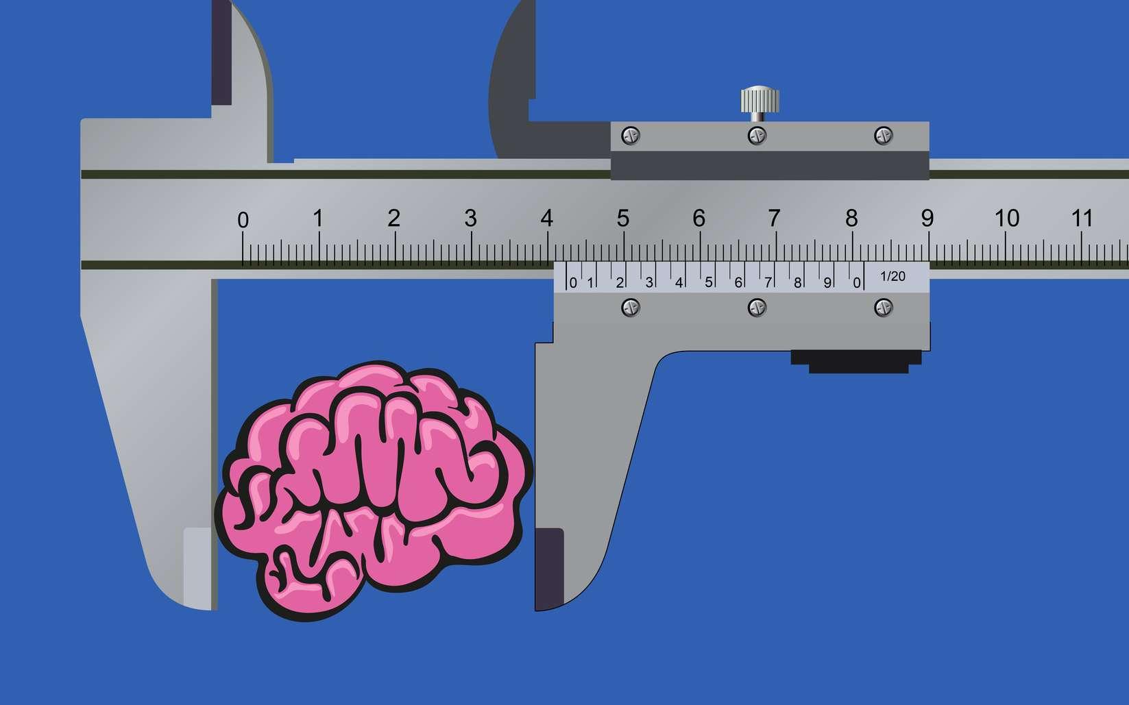 Le QI et la mesure la plus communément admise pour mesurer l'intelligence générale (facteur g). © pict rider, Fotolia