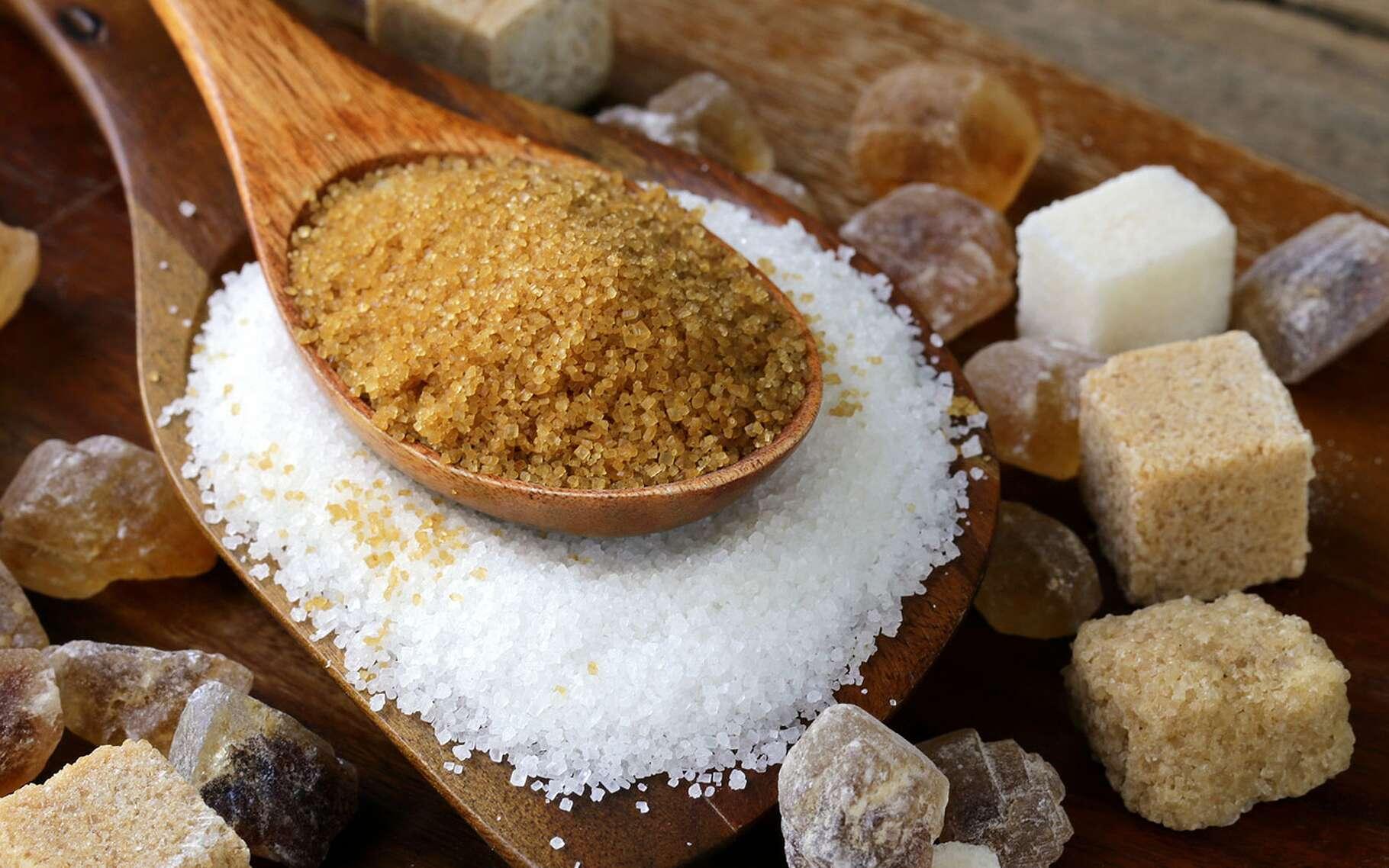Le sucre raffiné est très mauvais pour la santé. © Dream79, Fotolia