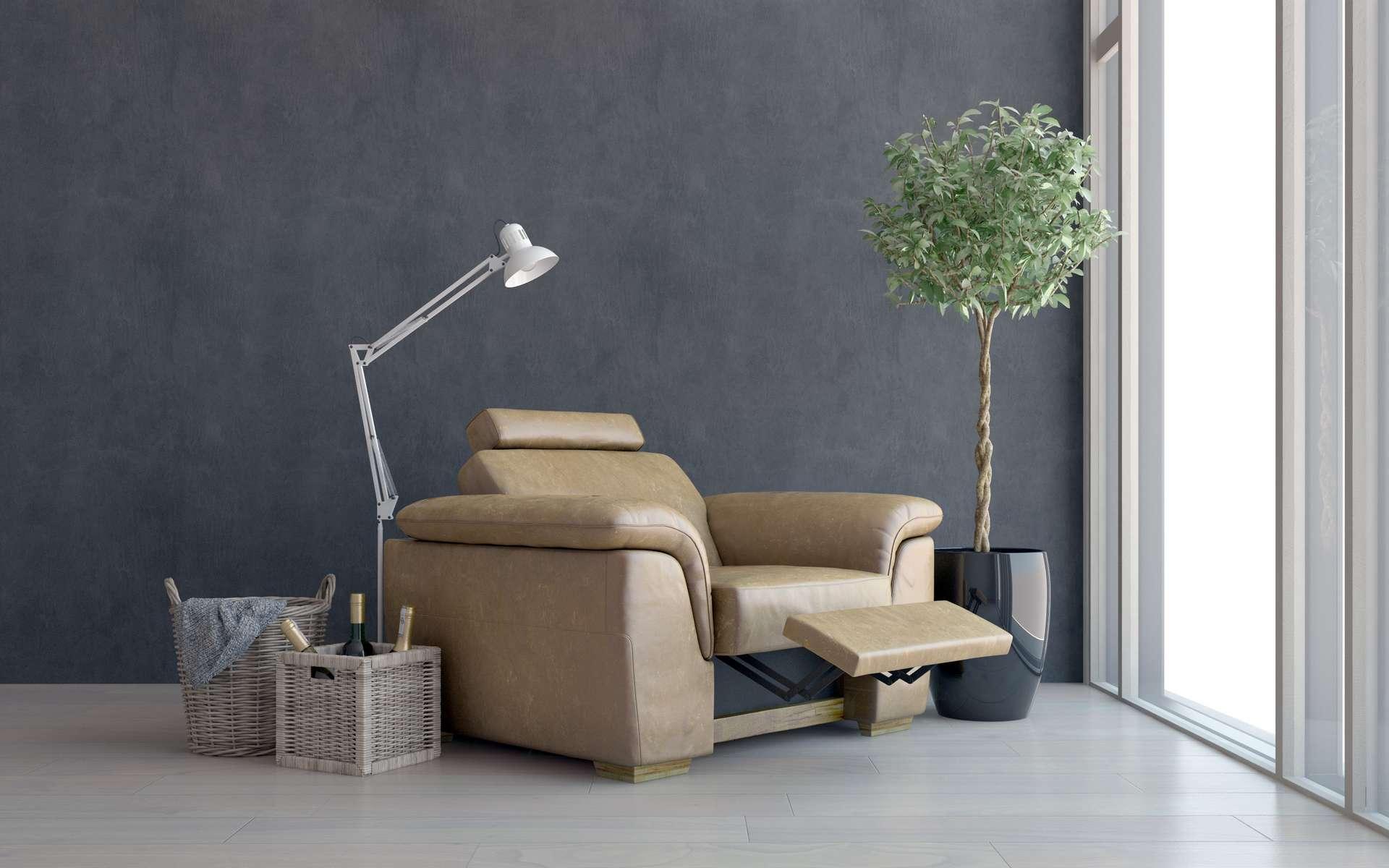 Le fauteuil inclinable existe avec diverses options. © XtravaganT, Adobe Stock
