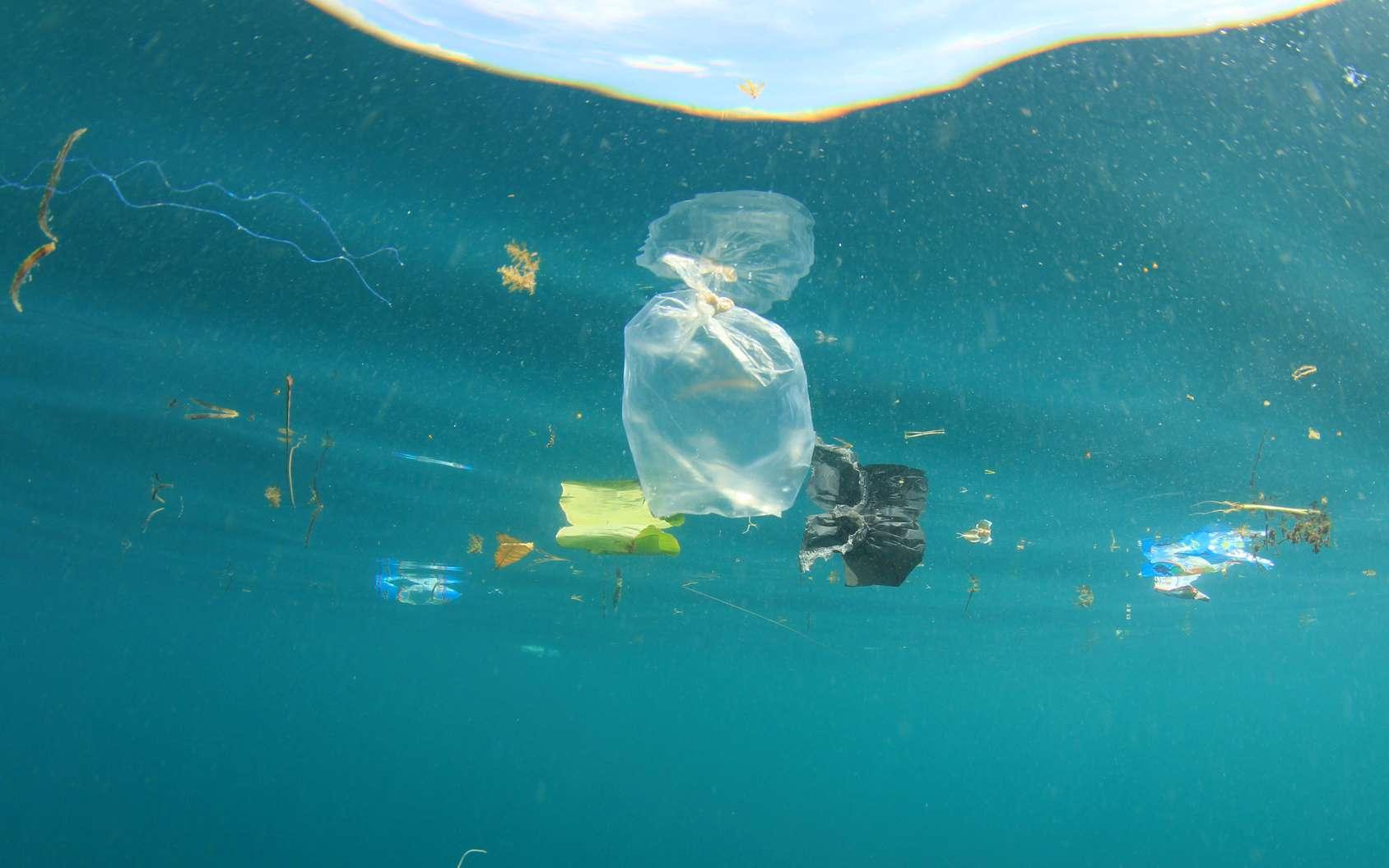 Le projet Ocean Cleanup, de Boyan Slat, consiste à poser un barrage flottant, fixe par rapport au fond, pour profiter du courant. Les débris seraient alors piégés et un bateau de ramassage passerait régulièrement. © Richard Carey, Fotolia