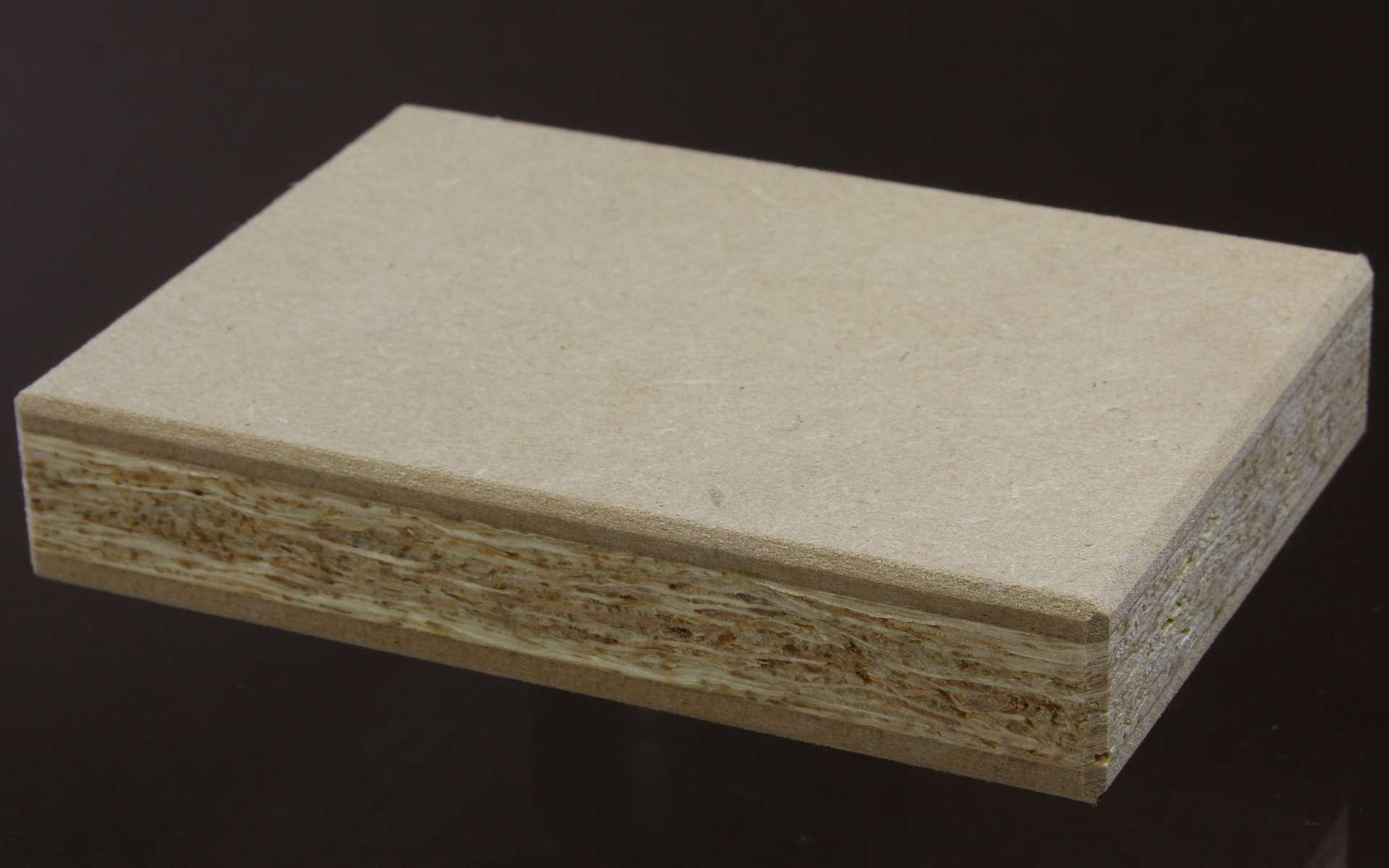 L'aggloméré est une pièce de bois faite d'un mélange de matière et d'un liant. © Elke Wetzig, CC BY-SA 3.0, Wikimedia Commons
