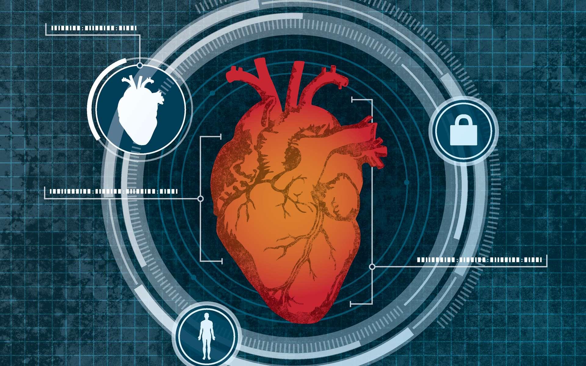 Le cœur a déjà fait l'objet de travaux sur la biométrie, plus précisément sur la fréquence cardiaque propre à chaque individu. Cardiac Scan se focalise sur la géométrie de cet organe vital. © University at Buffalo