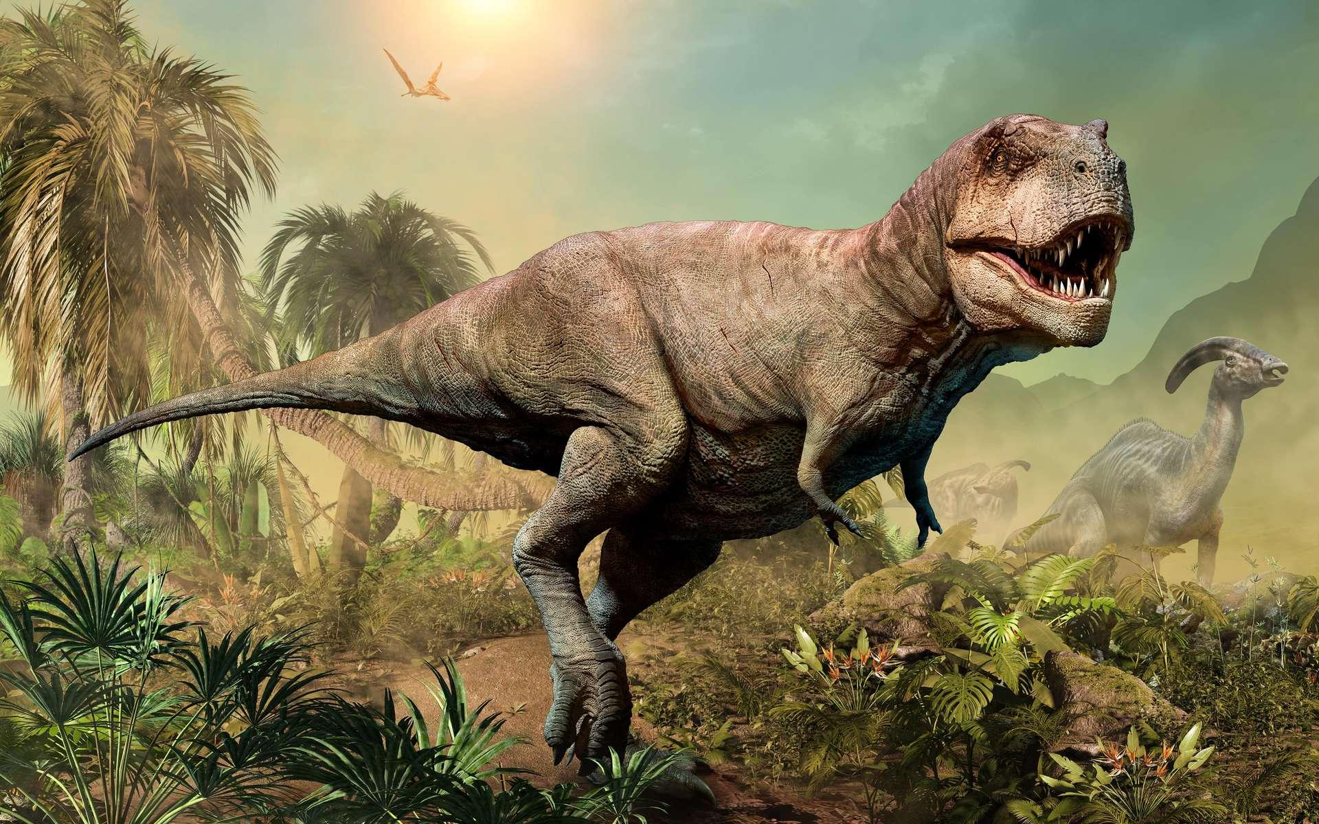Le T. rex appartient à la sous-famille des tyrannosauridés, dont les petits faisaient la taille d'un chien à la naissance. © Warpaintcobra, Adobe Stock
