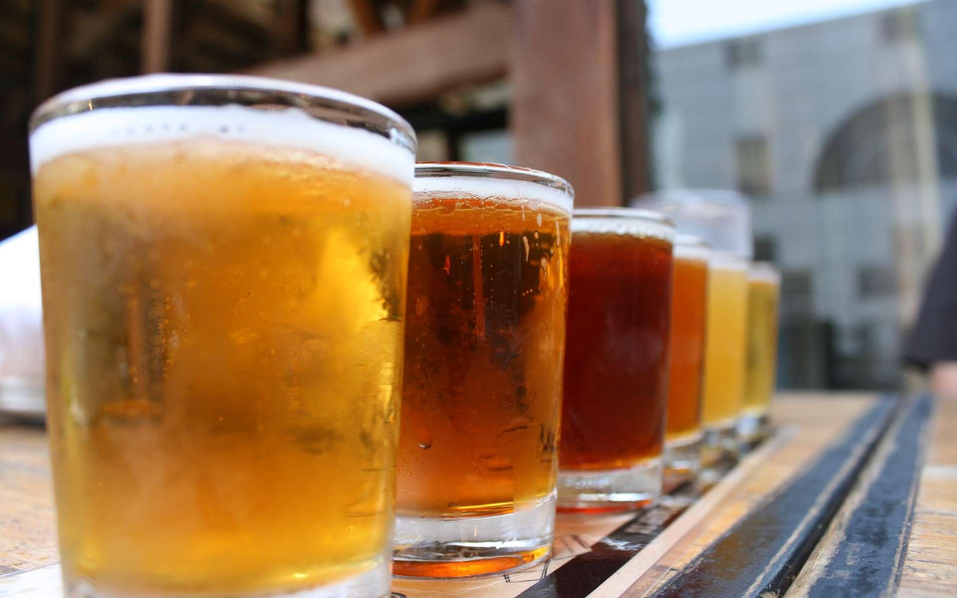 La fabrication de la bière nécessite plusieurs étapes : le maltage, le brassage, la cuisson du moût, la fermentation alcoolique et la garde. © Quinn Dombrowski, Flickr, CC by-sa 2.0