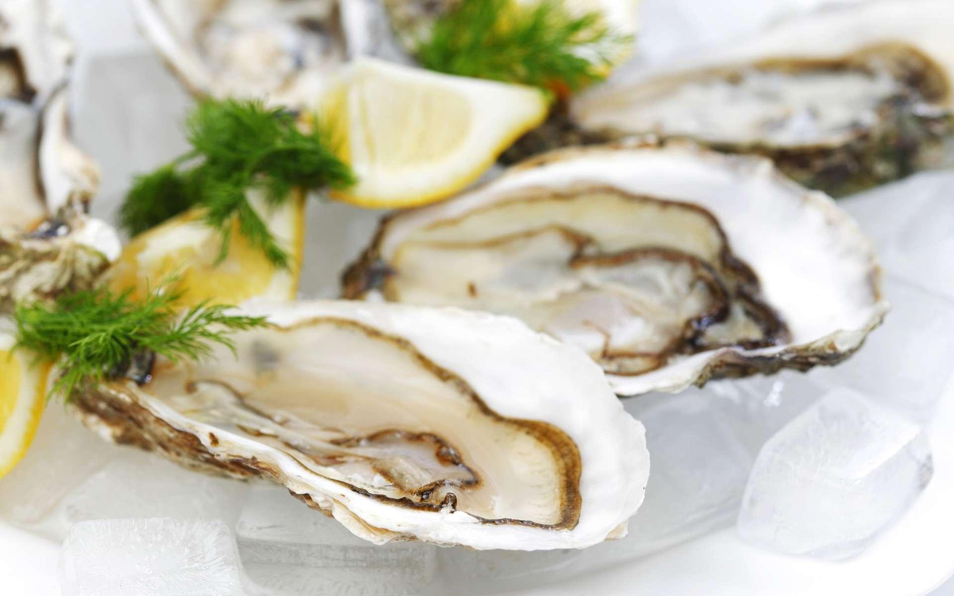 En présence de microplastiques, les huîtres produisent moins d'ovules et leurs spermatozoïdes sont moins mobiles. © Yellowj, Shutterstock