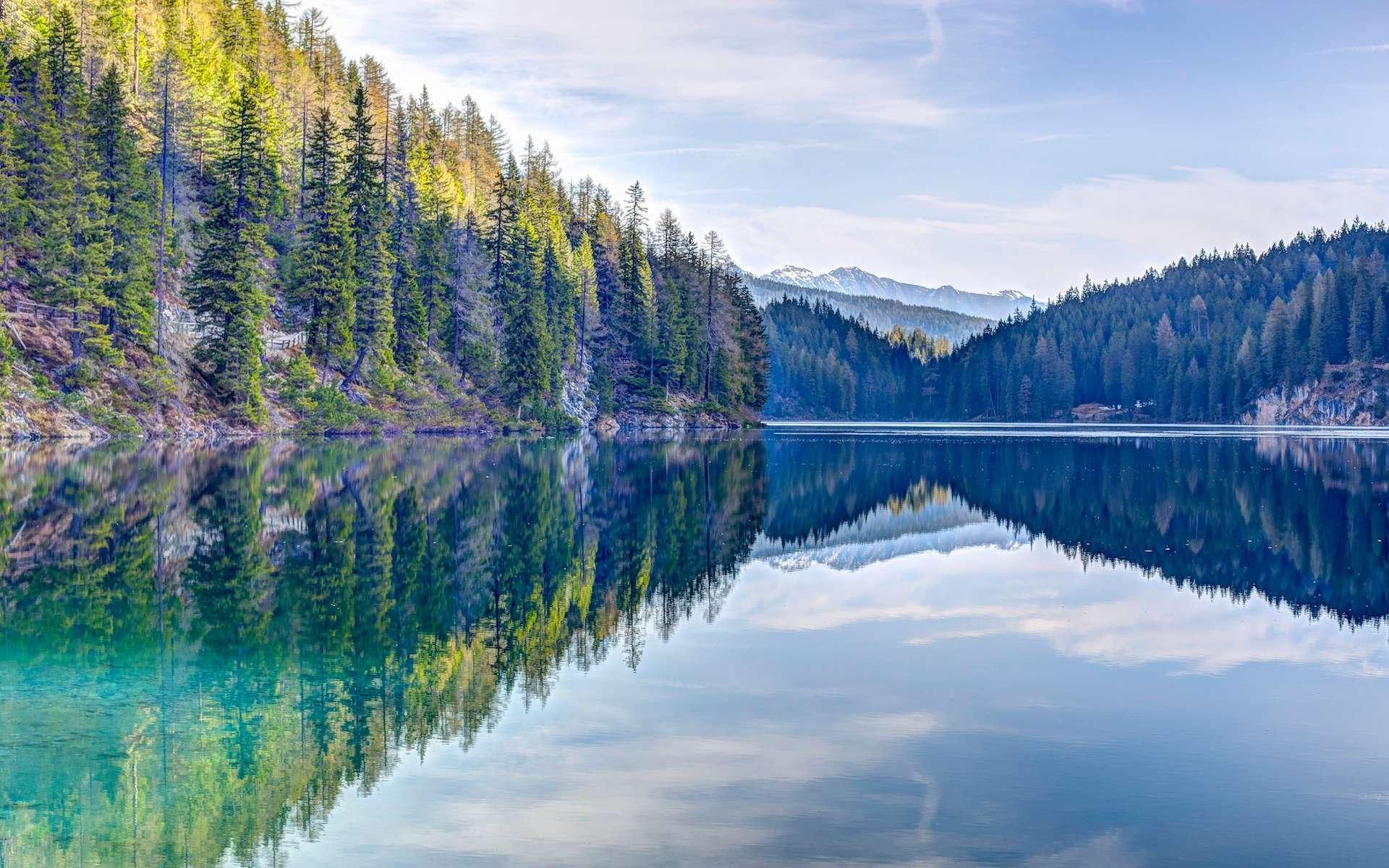 Où reste-il de la nature vraiment sauvage dans le monde ? © Eberhard Grossgasteiger, Unsplash