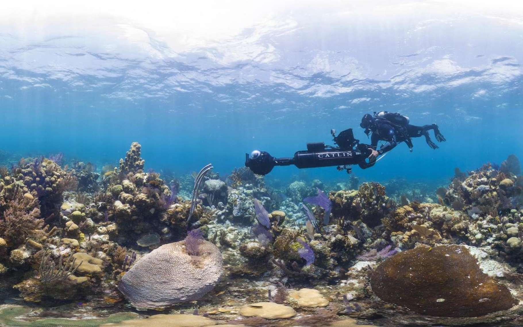 Prise de vue sur le récif corallien de l'île Glover, dans les Cayes du Belize, un archipel de la mer des Caraïbes. Ce drôle d'appareil photographique permet de réaliser un outil de promenade virtuelle à la manière d'un Street View. Le programme XL Catlin Seaview Survey (initialement Catlin Seaview Survey), lancé en 2012, étudie les récifs coralliens de la planète. Celui-ci, au Belize, est l'un des plus grands du monde, après celui de la Grande Barrière de corail, en Australie. © The Ocean Agency, XL Catlin Seaview Survey