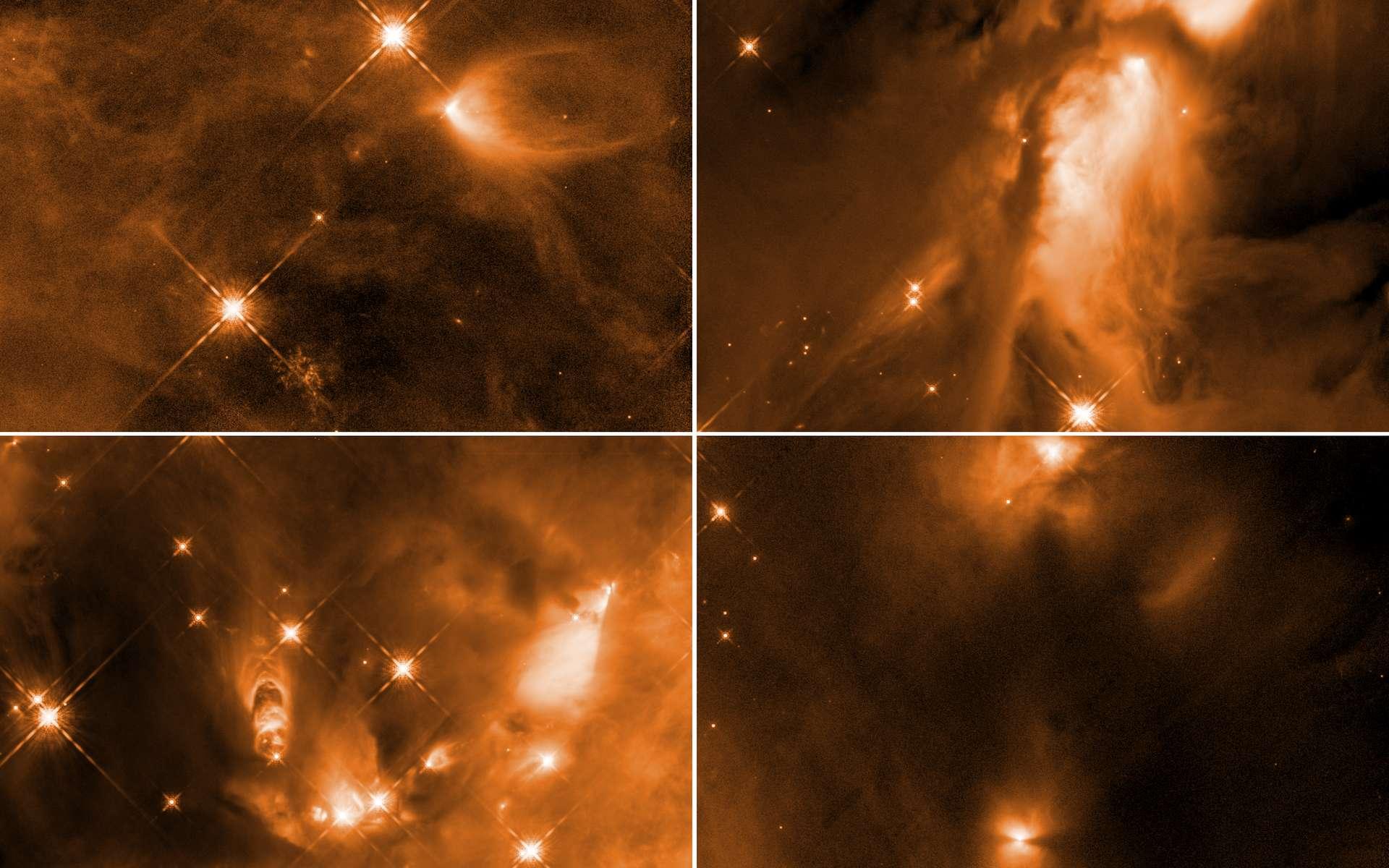 Des chercheurs de l'université de Toledo (États-Unis) ont étudié des étoiles naissantes dans le complexe d'Orion. Selon eux, un processus encore inconnu intervient pour stopper la croissance des protoétoiles. © Nasa , ESA , STScI , N. Habel, S. T. Megeath (Université de Tolède)