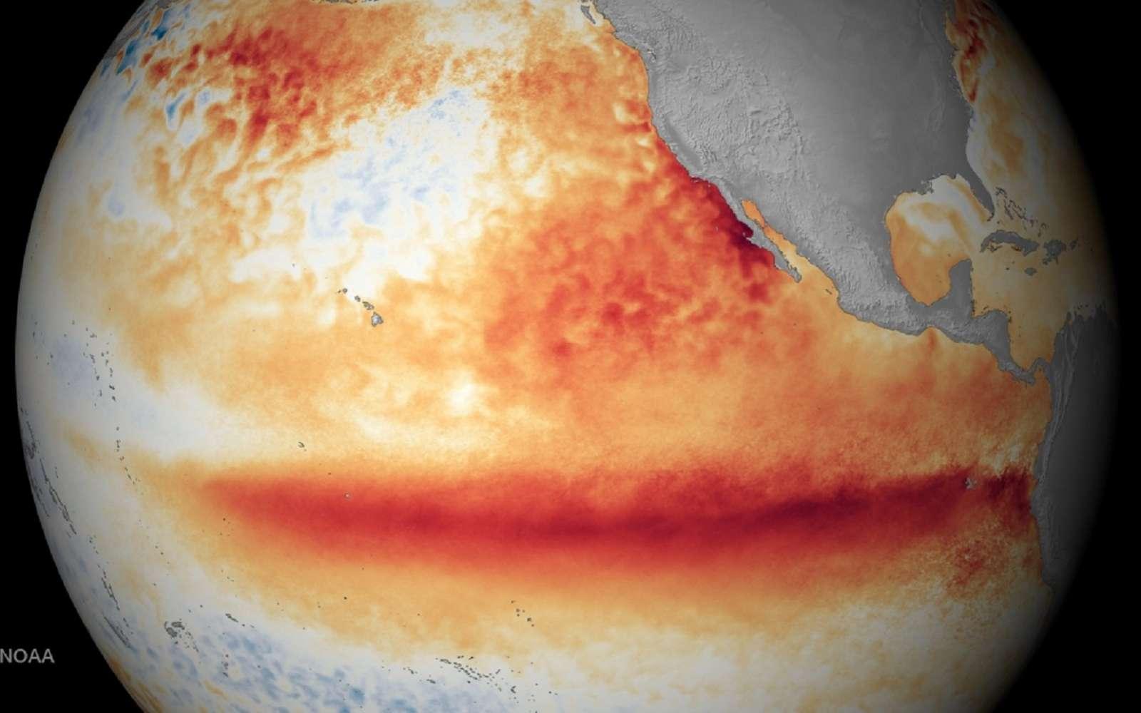 Le puissant El Niño de 2015-2016 marqué par des températures de surface élevées dans l'est de l'océan Pacifique, a déclenché des bouleversements météorologiques à travers le globe qui ont à leur tour influencé les épidémies. © Noaa