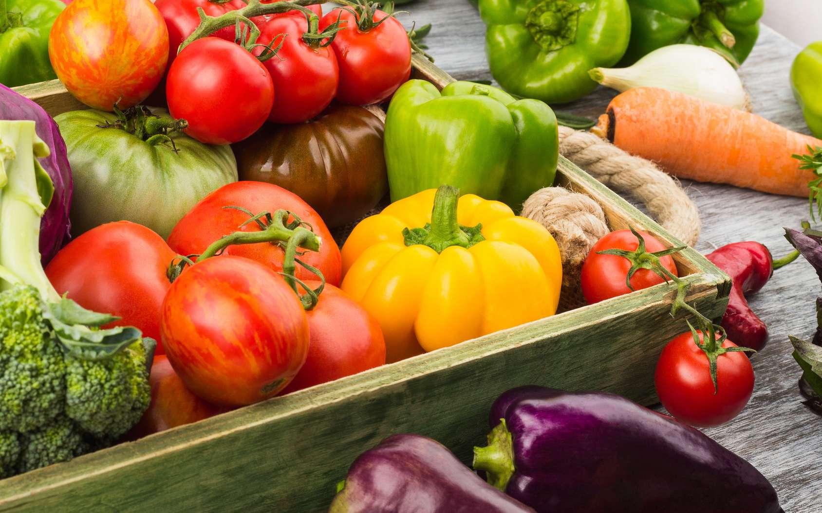 Courgettes, tomates, poivrons… : fruits ou légumes ? © lisssbetha , fotolia