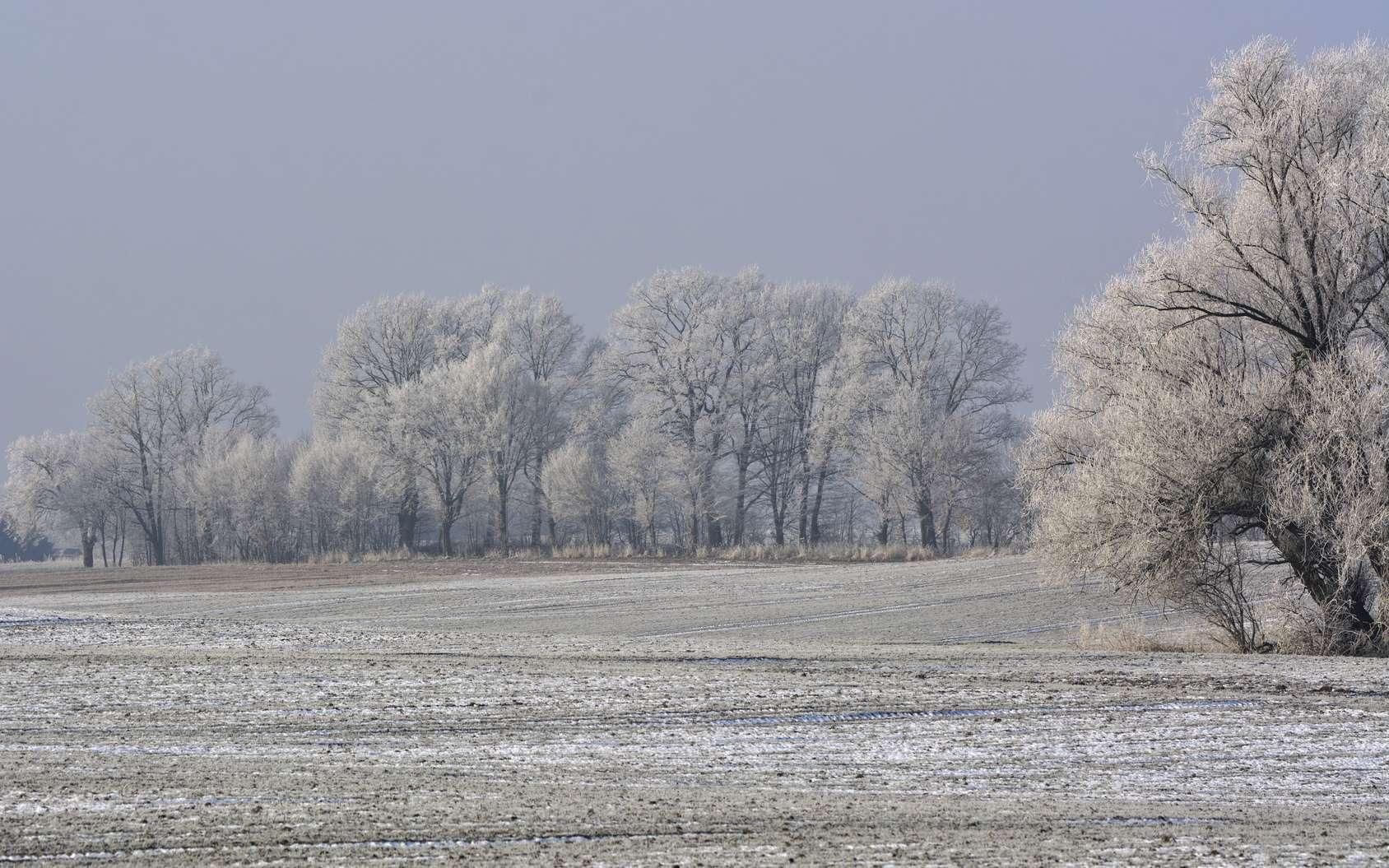 En période de grand froid, mieux vaut suivre quelques conseils pour limiter la consommation d'énergie. © ezp, Fotolia