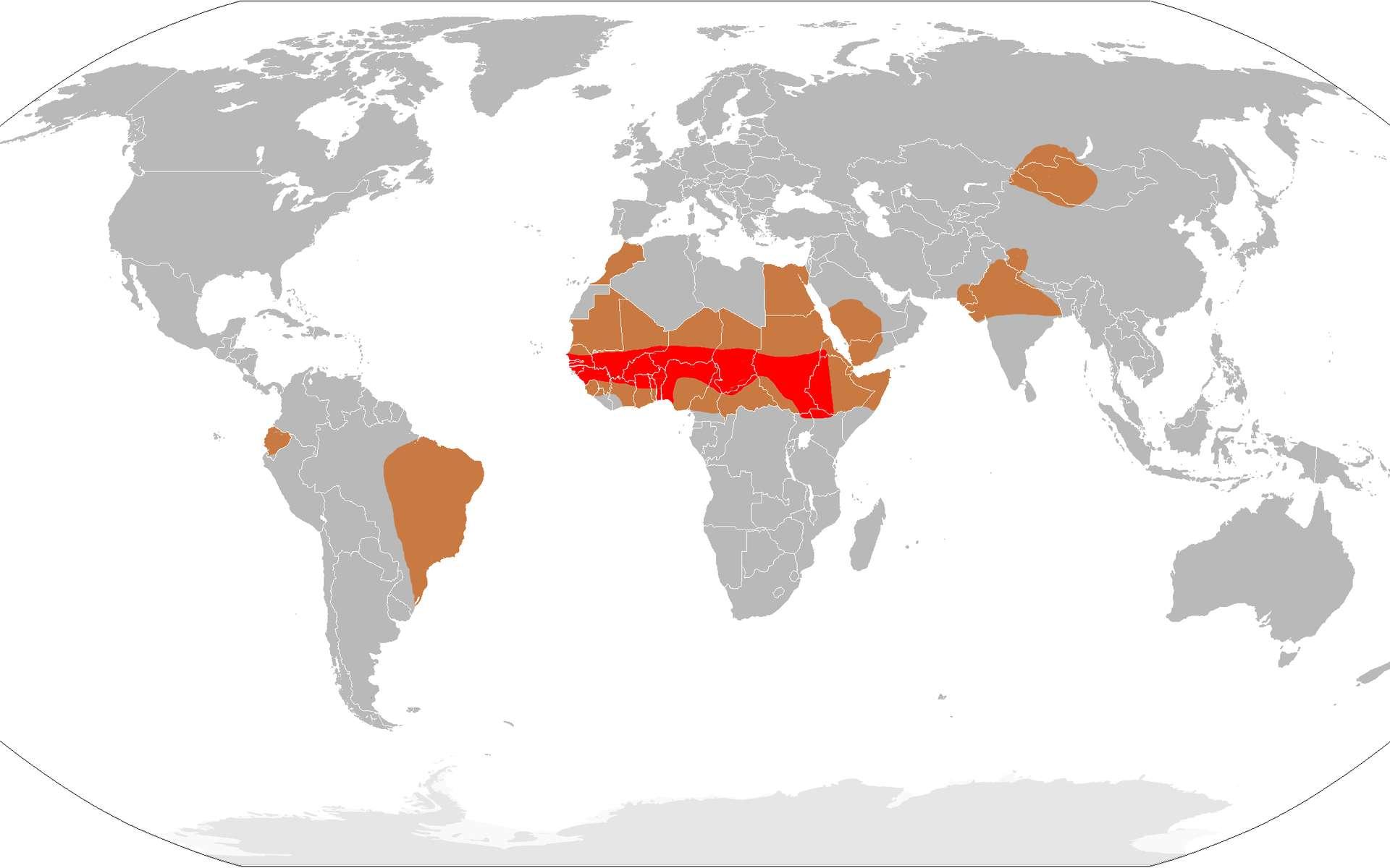 La méningite à méningocoque dans le monde. En rouge : ceinture de la méningite. En marron : zone épidémique. En gris : zone avec cas sporadiques. © Leevanjackson, dérivé de CIA World Factbook, Wikipedia, DP