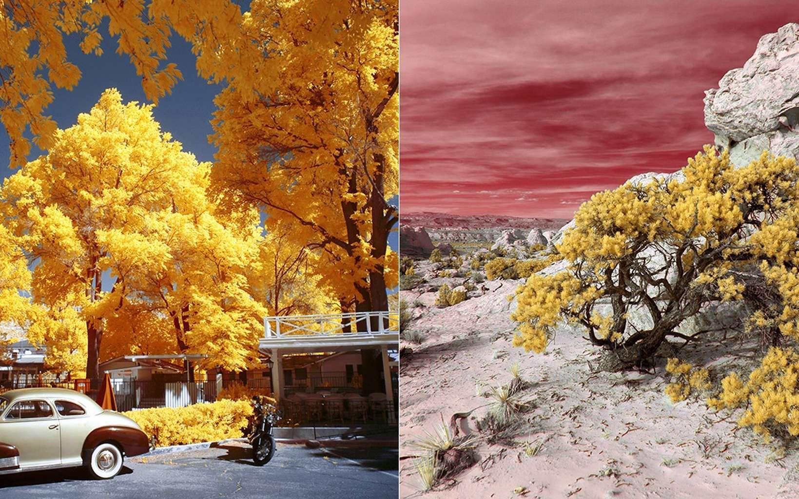 Deux images de la série « Utah » et qui ont remporté le premier prix catégorie essai au concours de photographie infrarouge organisé par Kolari Vision. © Luciano Demasi