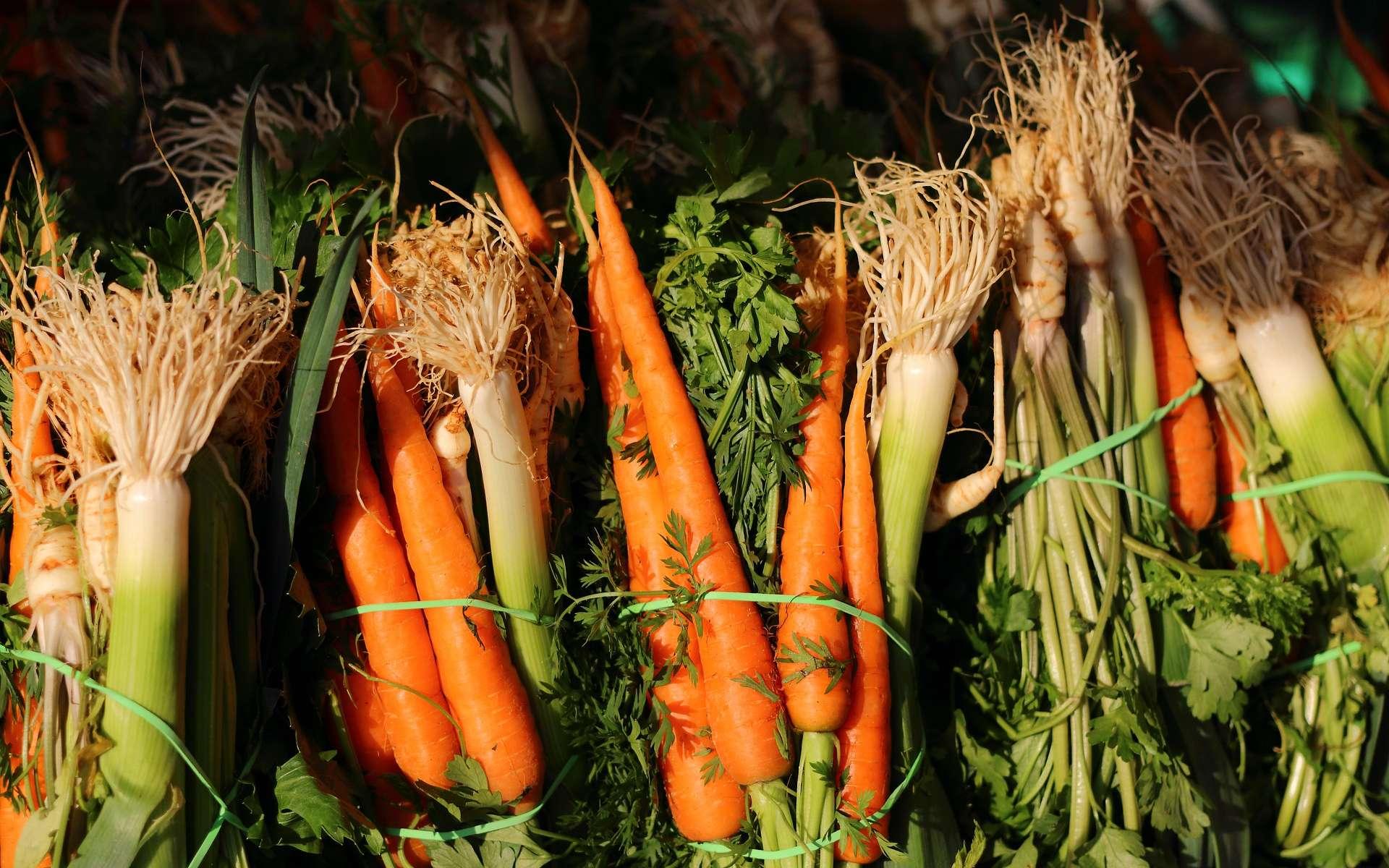 Comment conserver des légumes l'hiver ? © Jankosmowski, Pixabay, DP