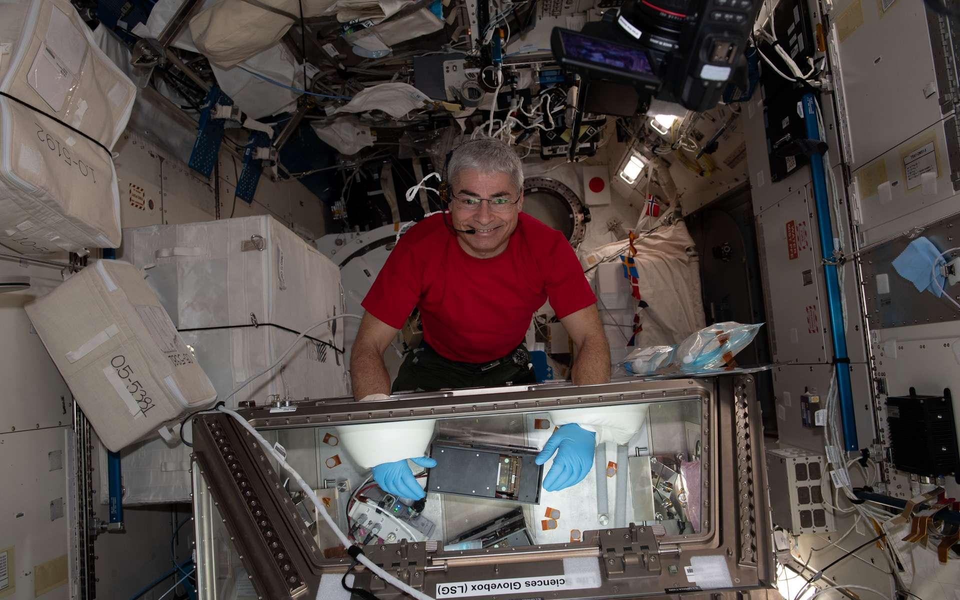 L'astronaute Mark Vande Hei travaille sur le projet de recherche Kidney Cells-02 qui vise à améliorer le traitement des calculs rénaux et de l'ostéoporose. © Nasa