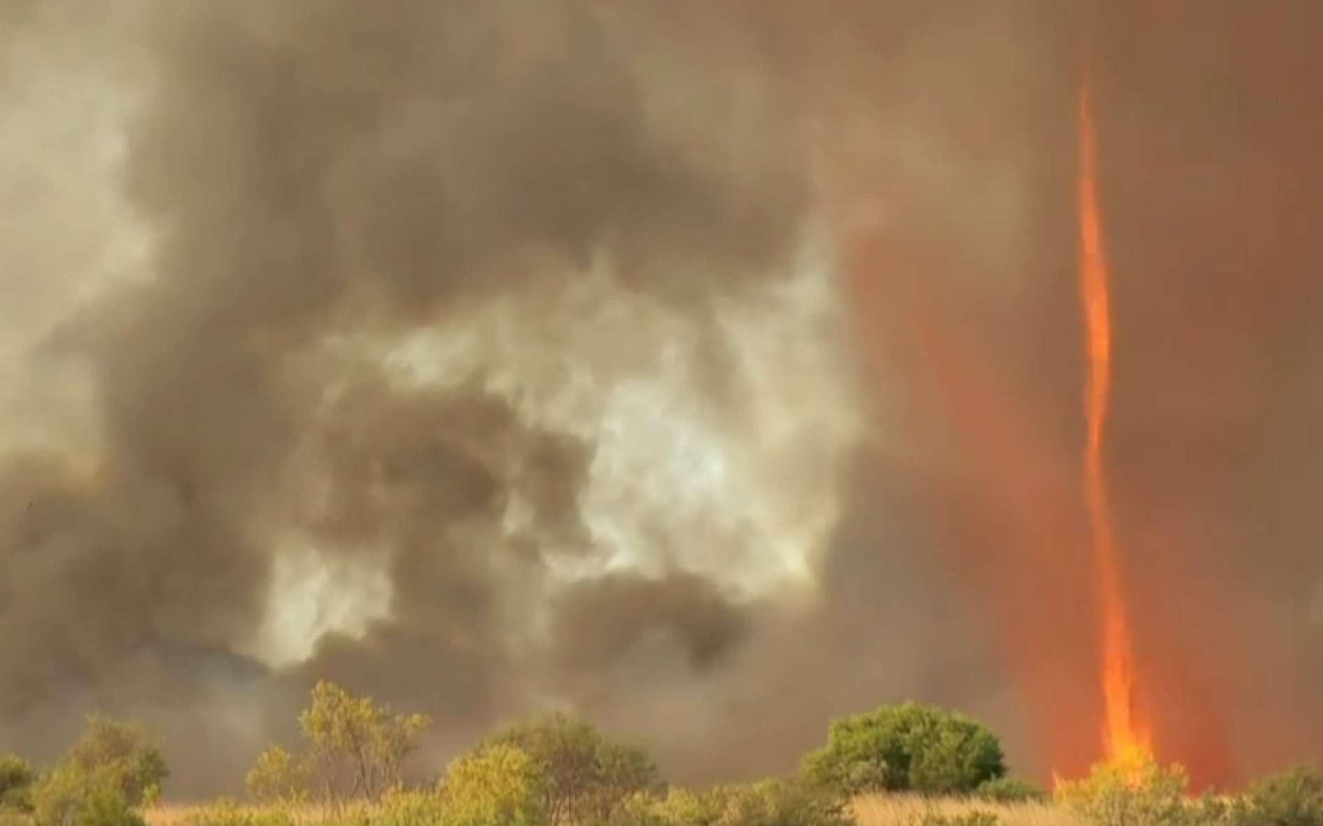 Un tourbillon emporte des débris enflammés sur le front d'un incendie de forêt aux États-Unis. Comme les tourbillons de poussière observés sur de vastes plaines ou déserts surchauffés, ou encore sur l'océan, ce phénomène exige de la chaleur et du vent, lequel peut être généré, ou renforcé, par l'incendie lui-même. © Discovery Science